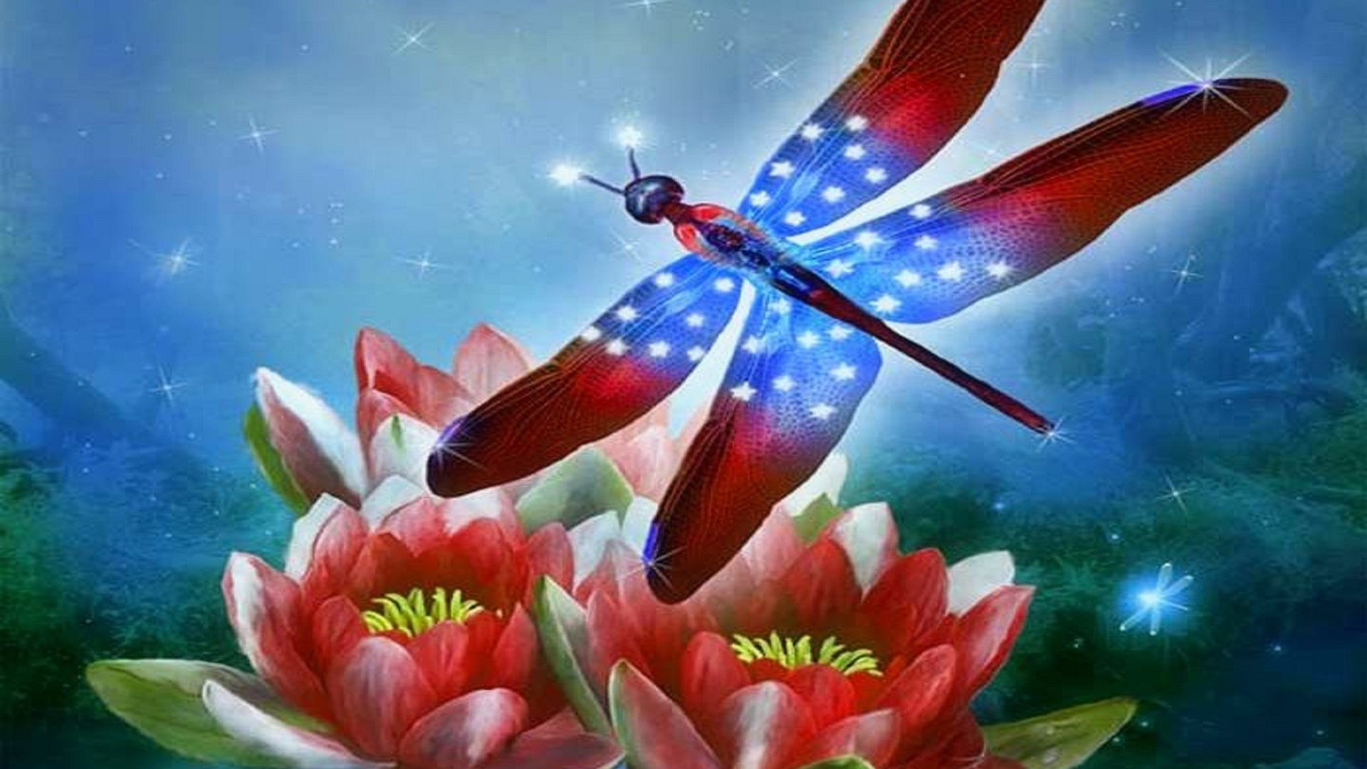 1920x1080 October 5, 2016 - Dragonfly Flowers Attractions Sparkle Art Four Creative  Pre Brilliant Lovely Valentines