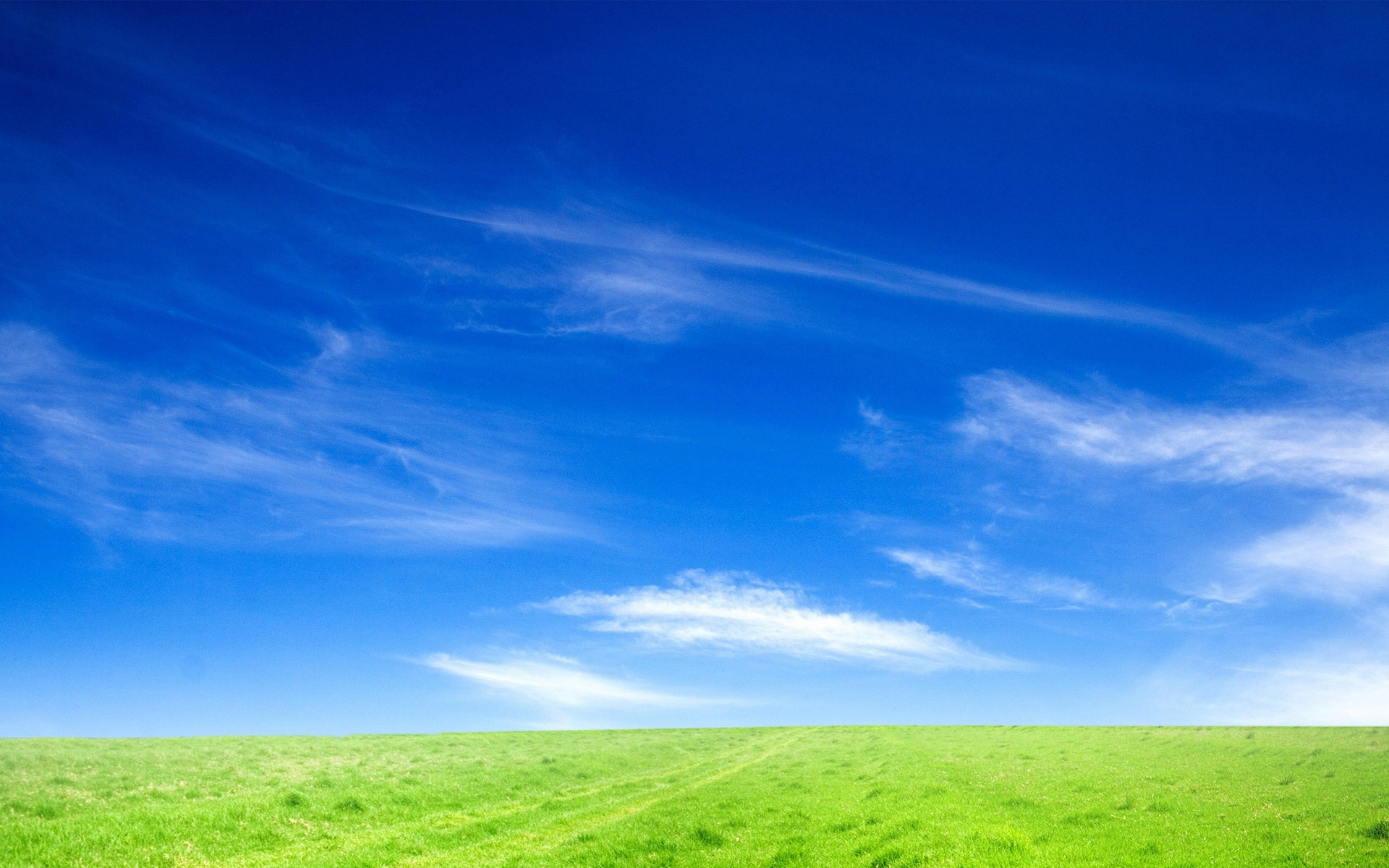 1920x1200 Blue Sky and Green Grass