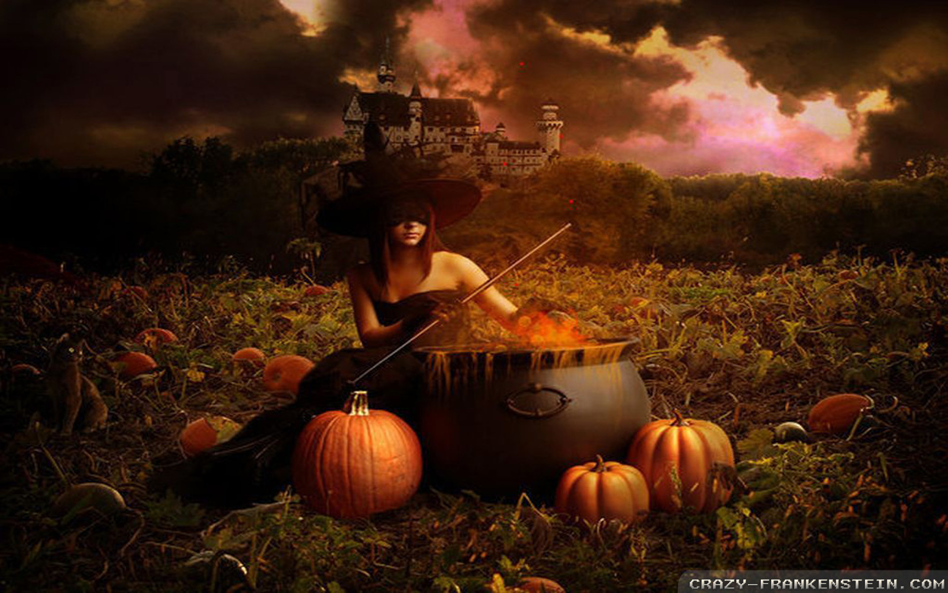 Halloween Witch Wallpapers 58 Images HD Wallpapers Download Free Images Wallpaper [1000image.com]
