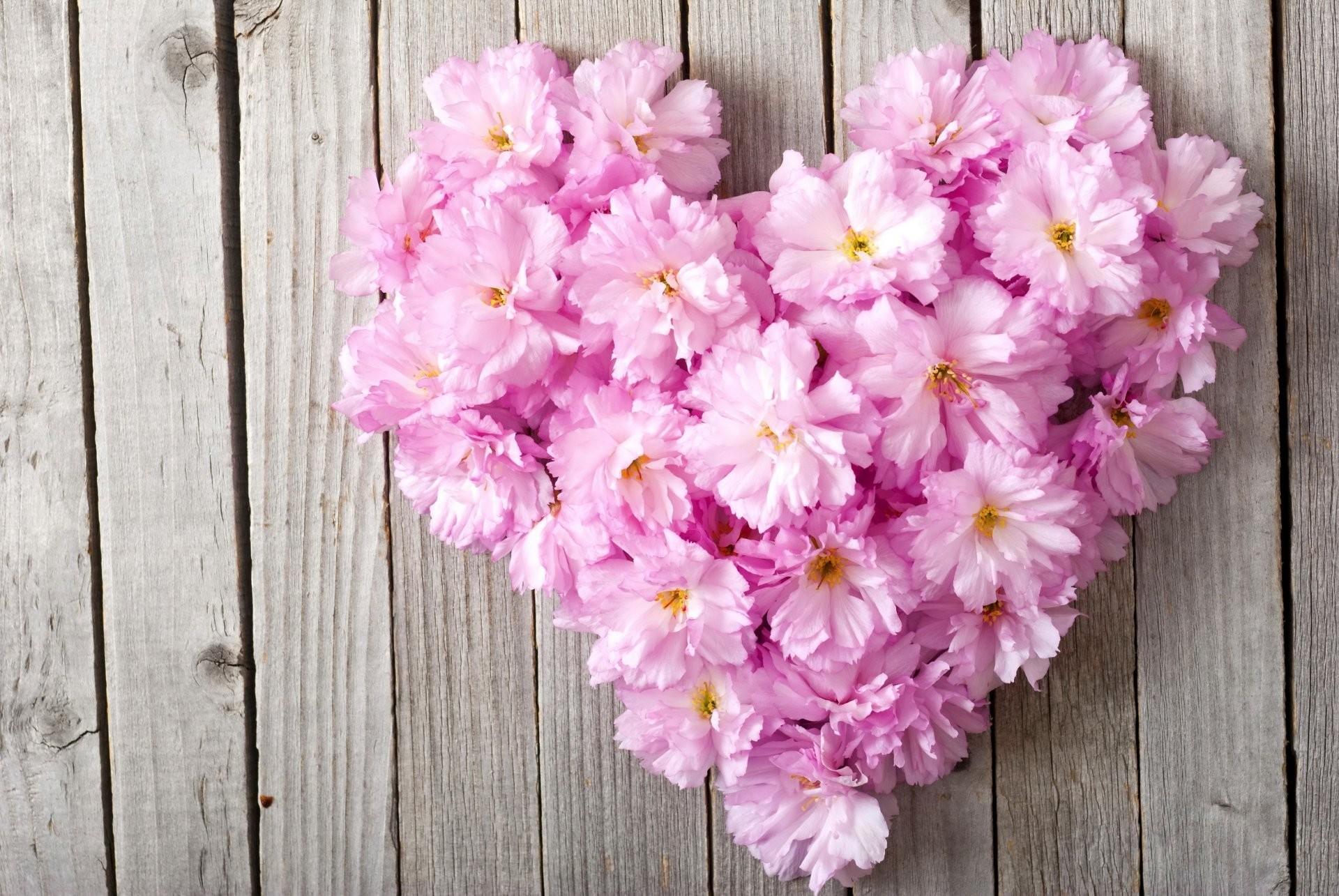 Love flower wallpaper 48 images 2560x1600 woman love flower mightylinksfo