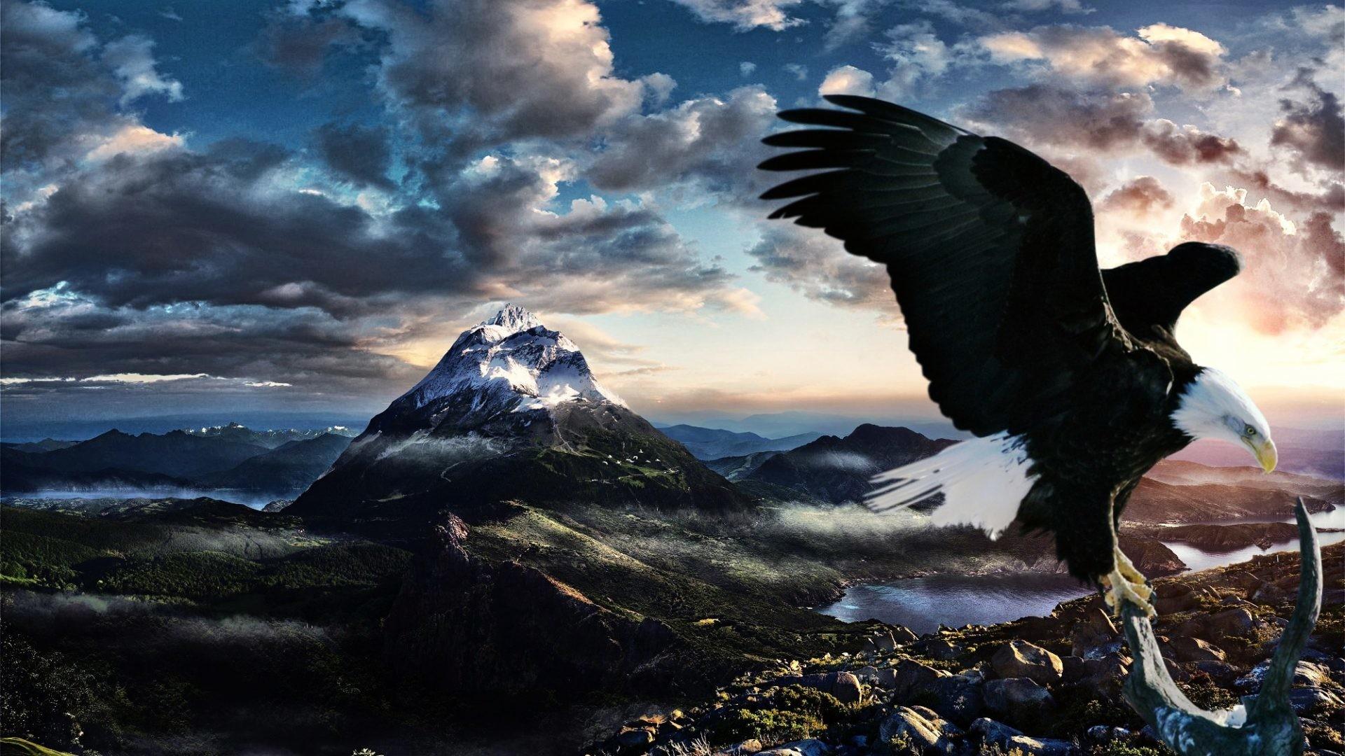 Eagle Desktop Wallpaper (73+ Images