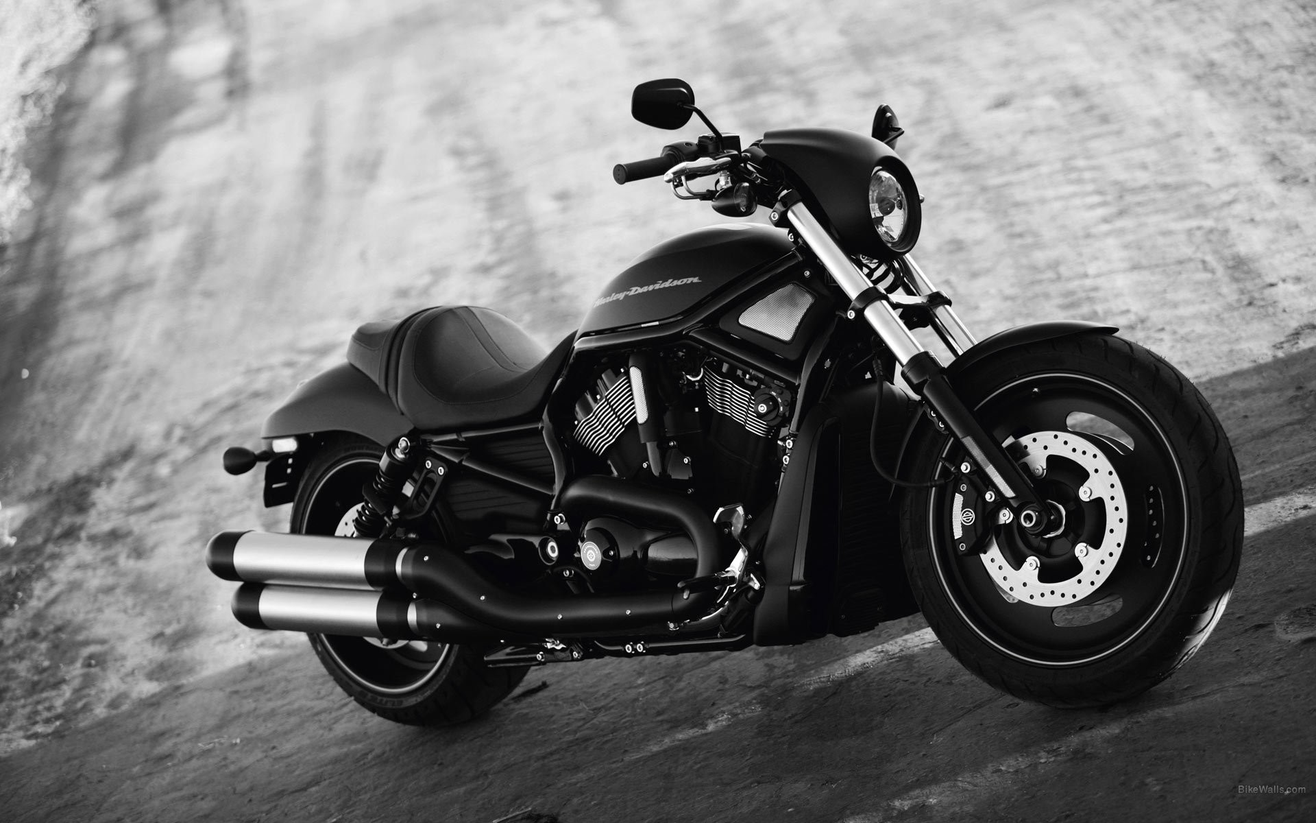 1920x1200 Harley Davidson Night Rod Wallpapers Images