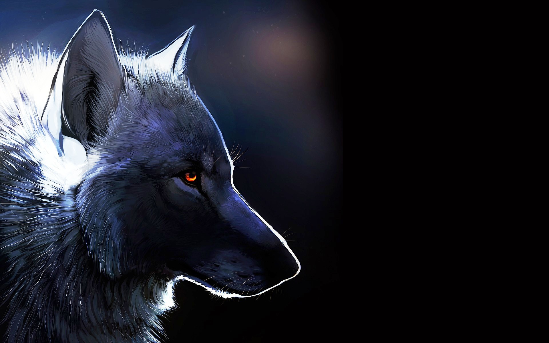 1920x1200 Animal - Wolf Wallpaper