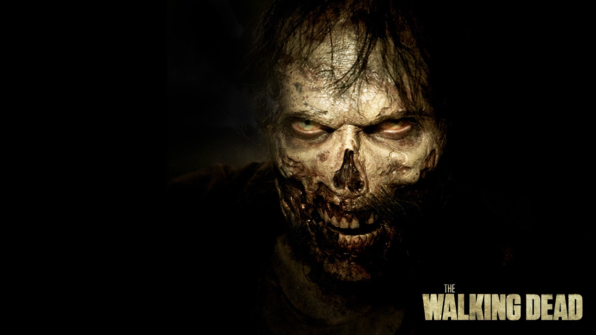 1920x1080 The Walking Dead (Season 5) - Them | Walking Dead Zombie Wallpaper in 1920