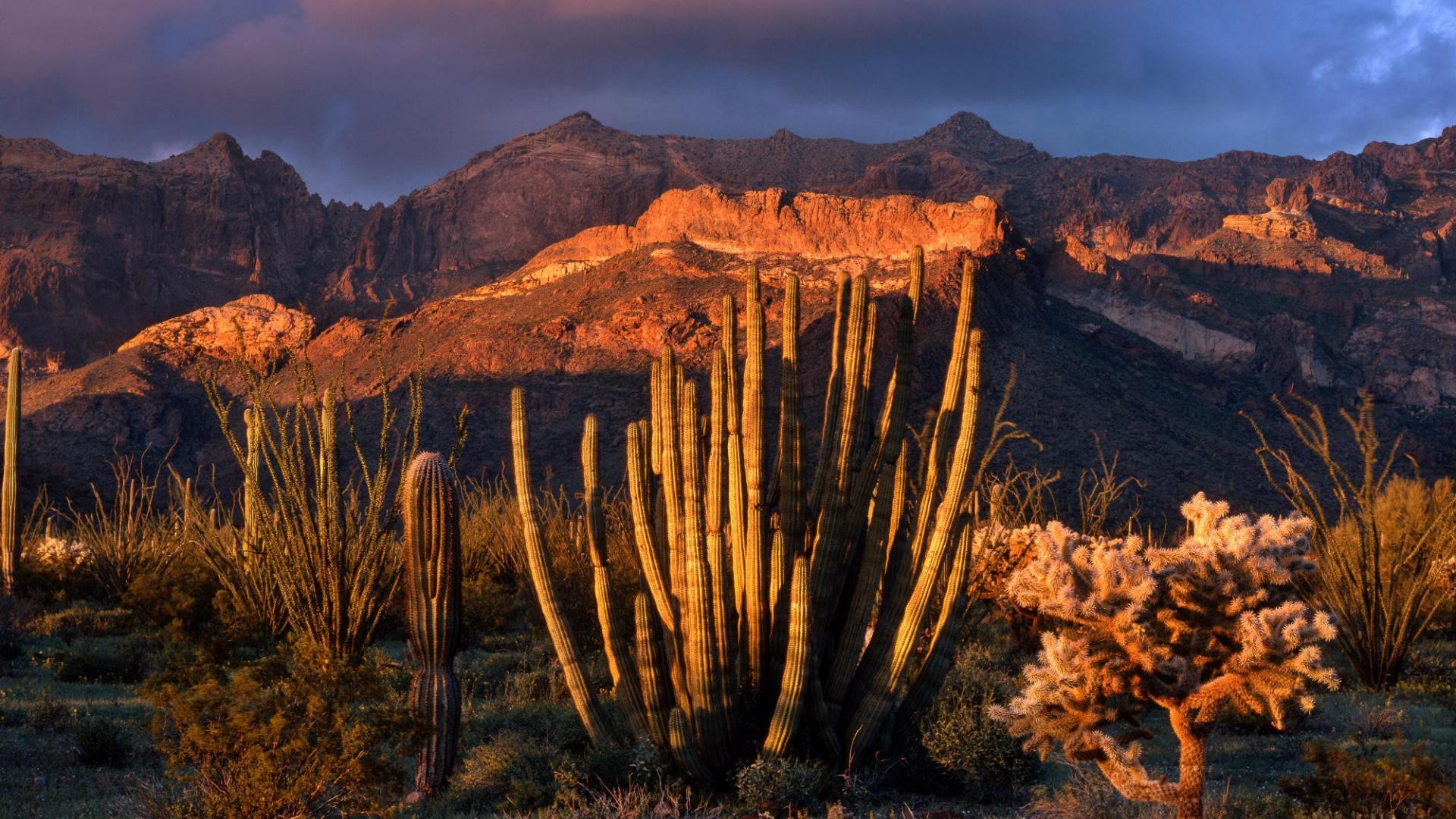 1920x1080 light sunsets mountains world photography arizona national cactus monument pipes  organ Wallpaper