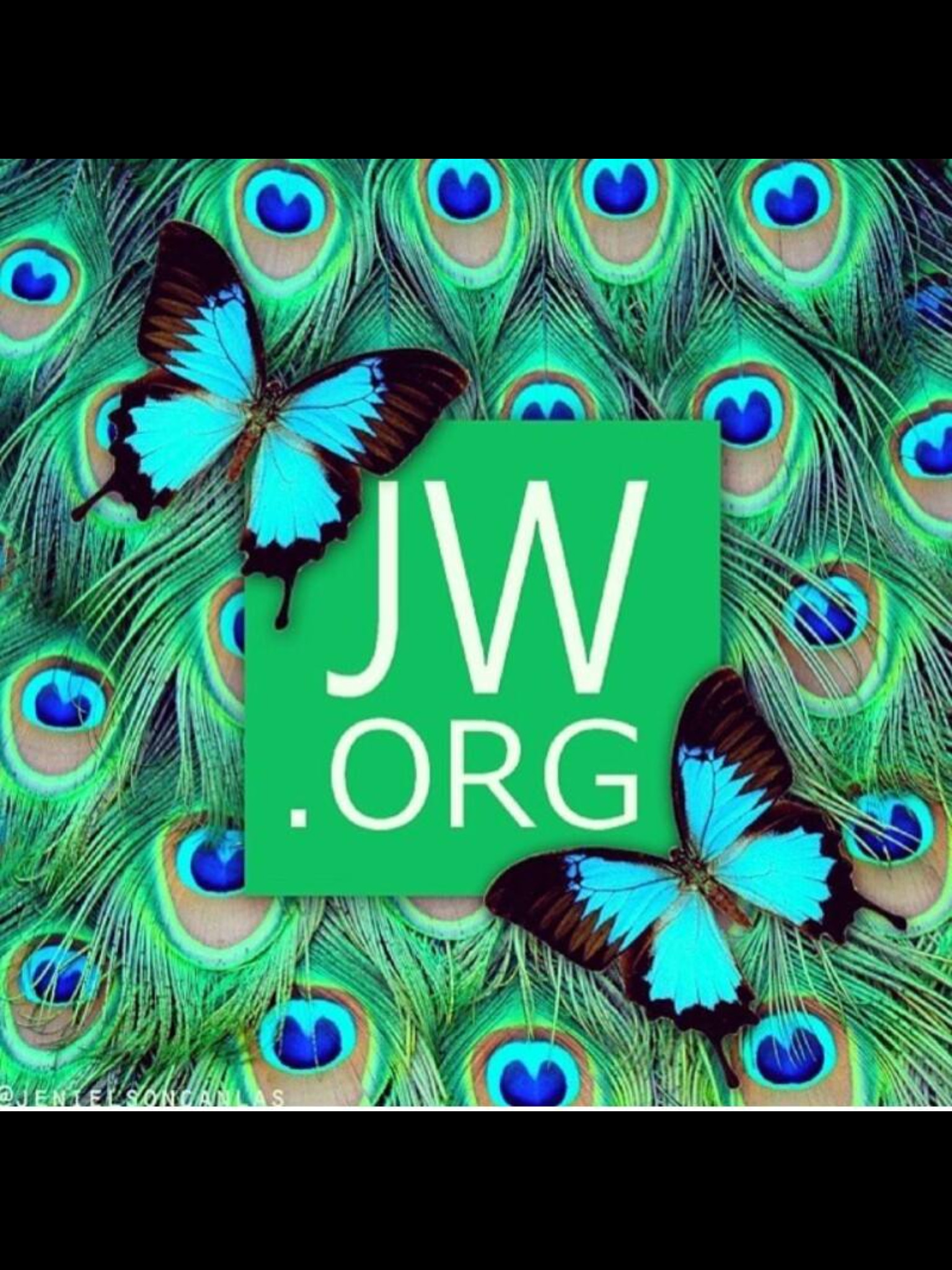 1536x2048 JWorg For All The Answers To Your Questions