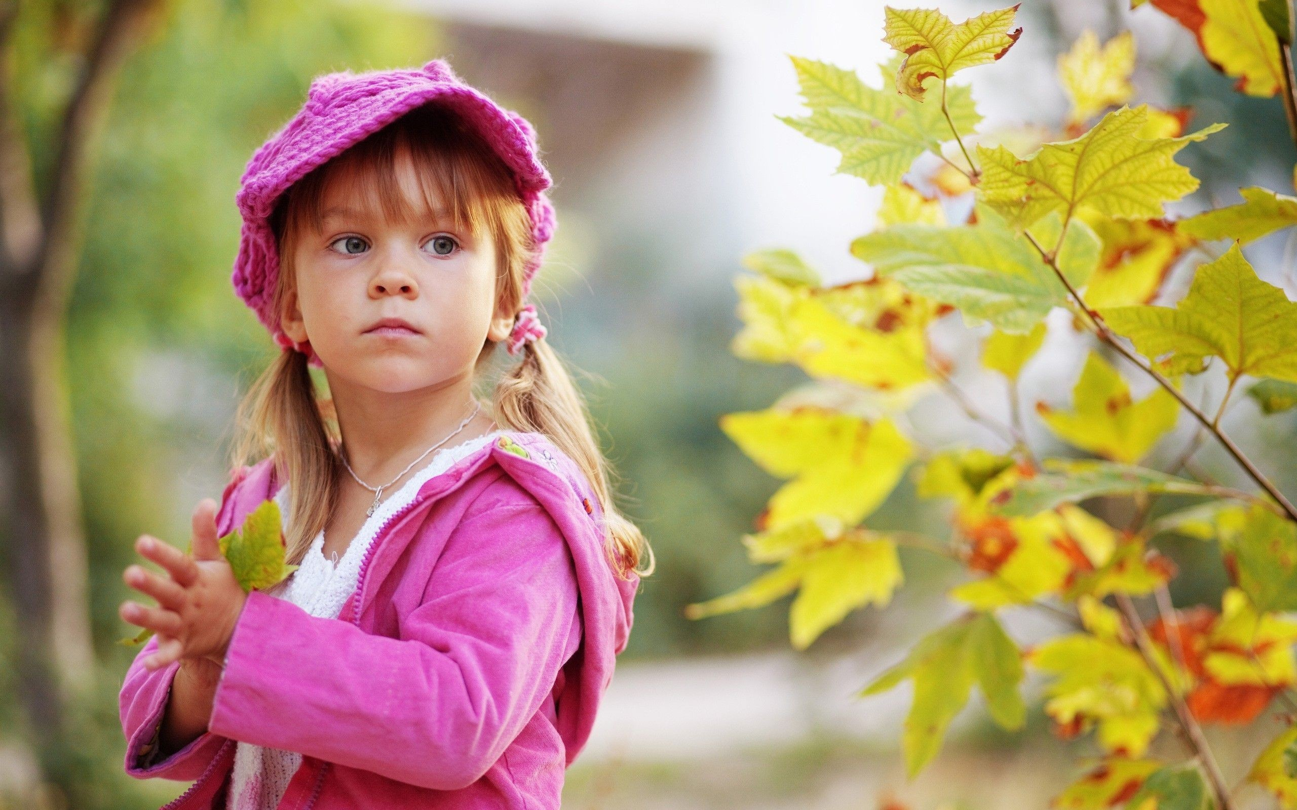 2560x1600  Hd Child Pic Fresh Baby Child In Autumn Hd Wallpaper Wallpaper  New Boy And Girl