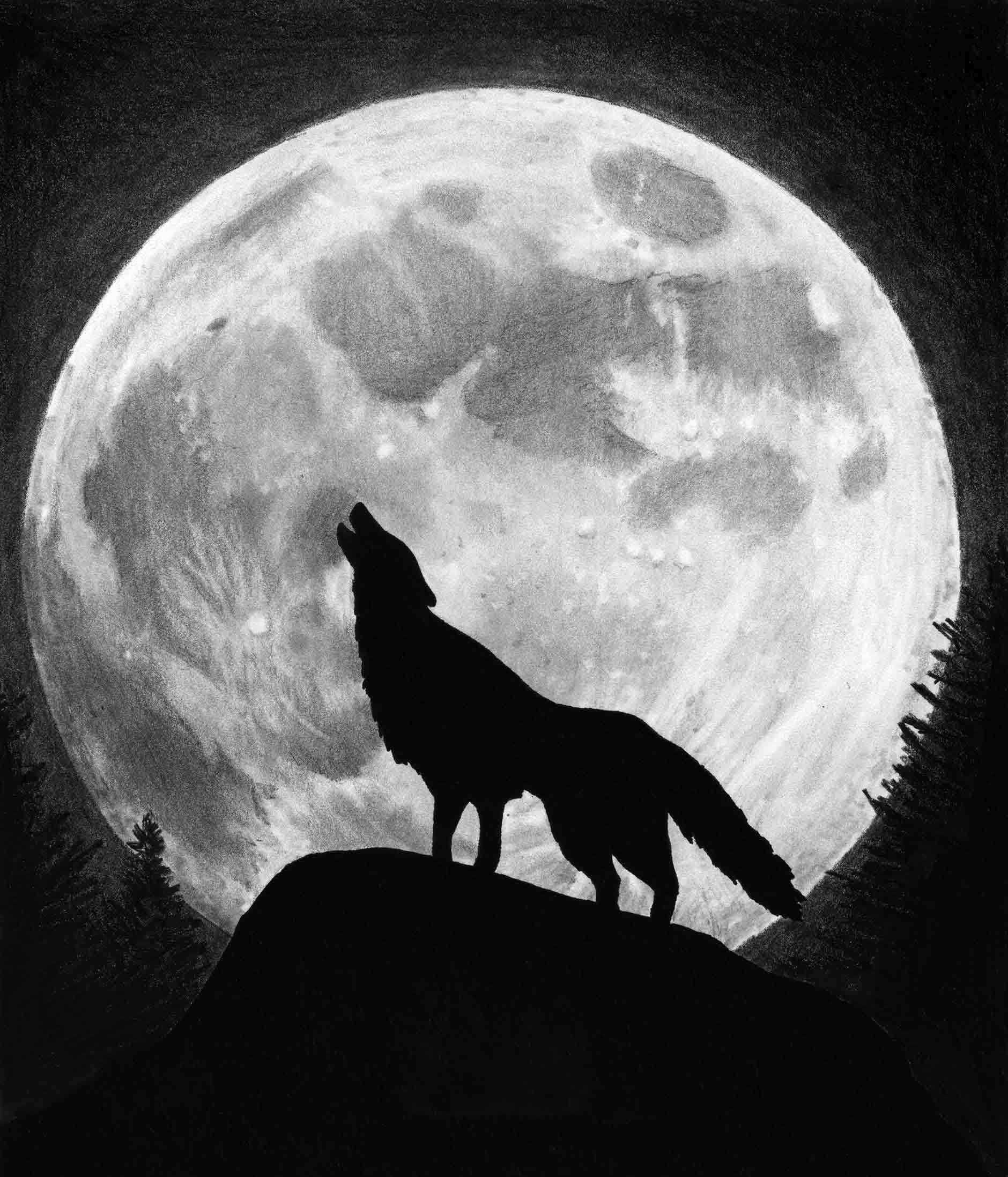 Wolf and Moon Wallpaper (67+ images)