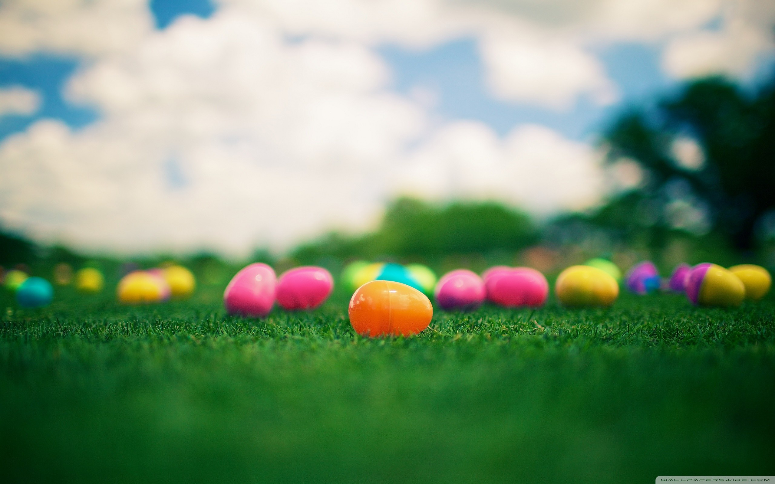 2560x1600 wallpaper.wiki-Holiday-Easter-Background-PIC-WPB007331