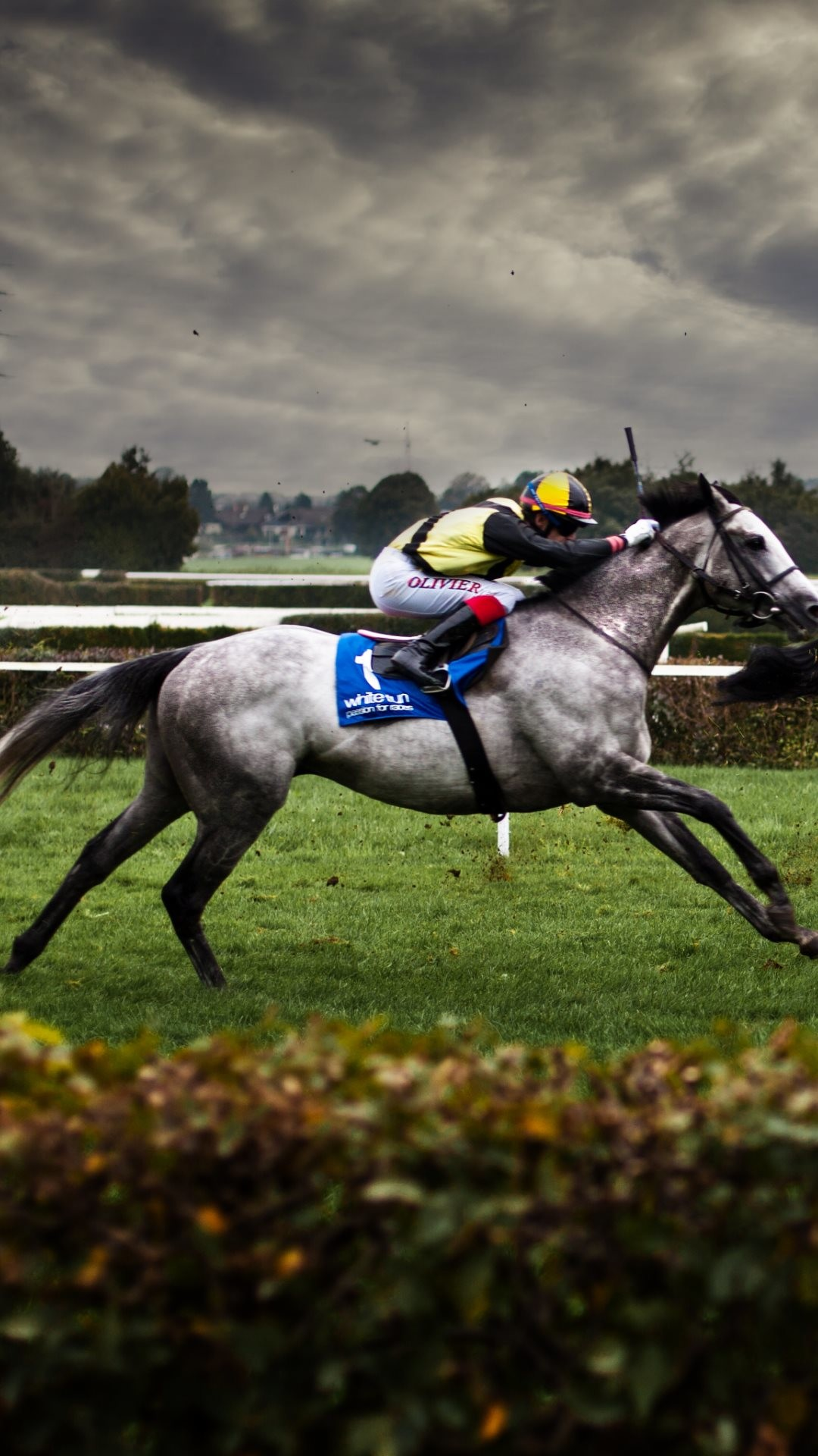 Horse Racing Wallpaper 52 Images