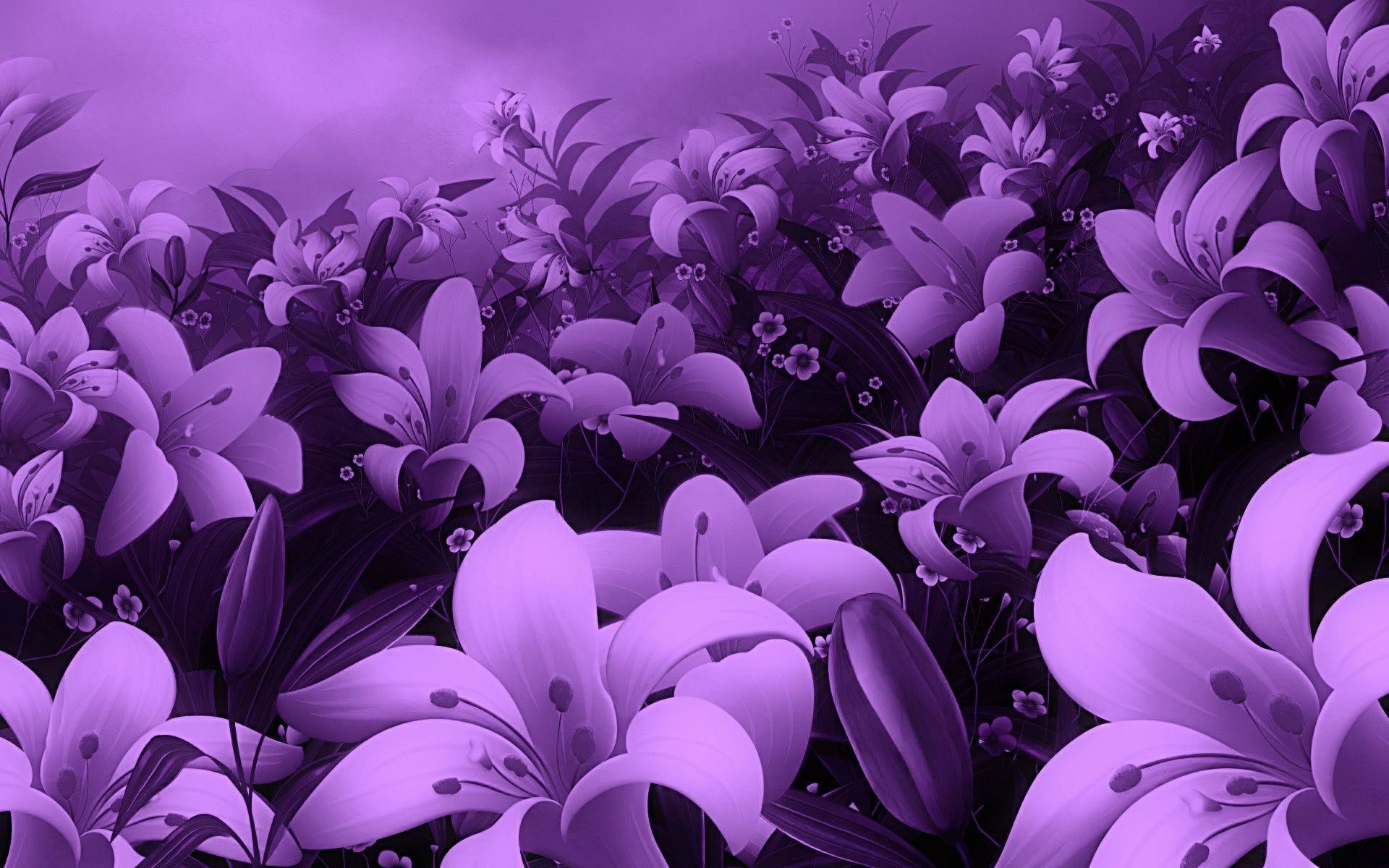 1920x1200 Wallpapers For > Cute Purple Flower Background