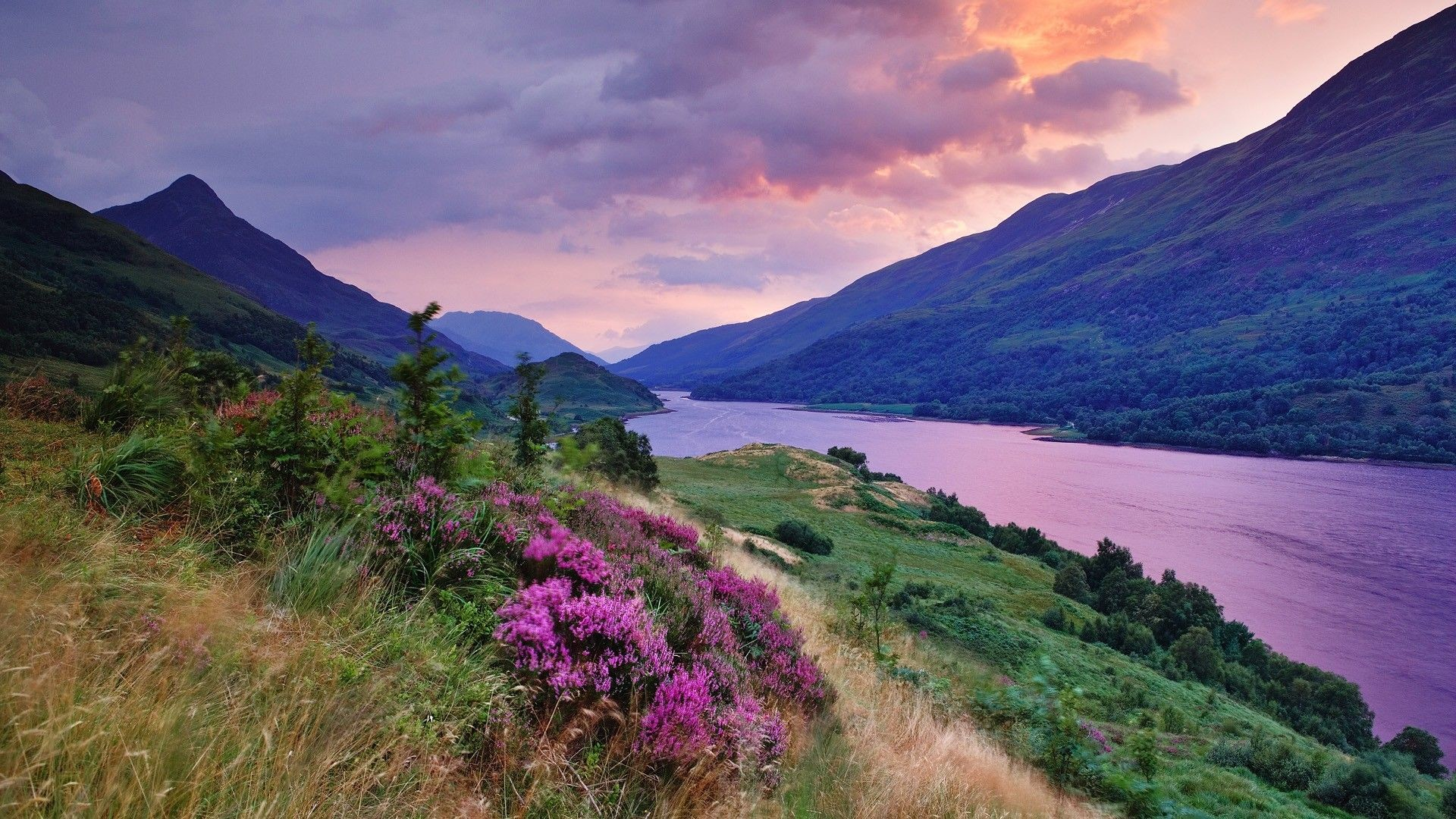 Pictures Of Scotland For Wallpaper 66 Images