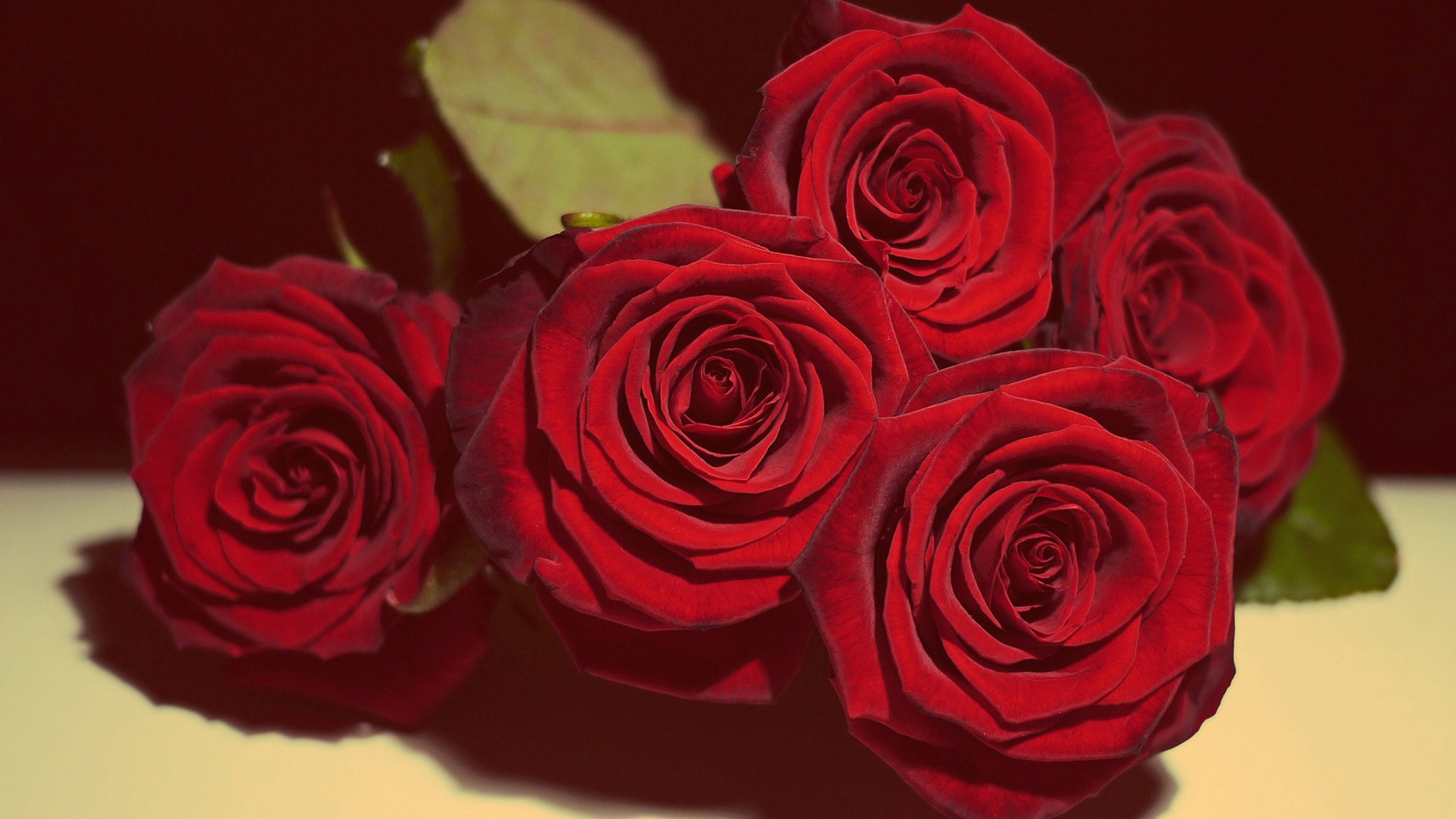 1920x1080 Five red roses wallpaper, Rose Flower images, Rose Pictures and .
