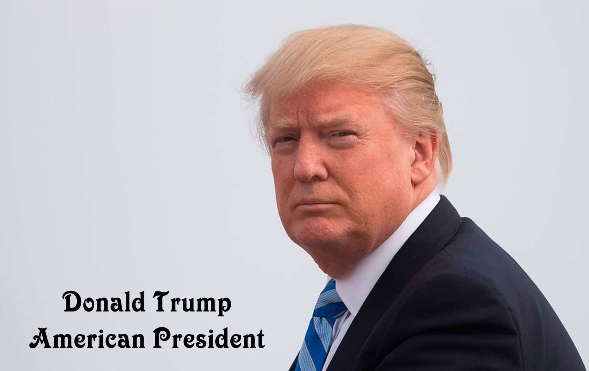 1920x1210 Donald Trump American President Images Wallpapers