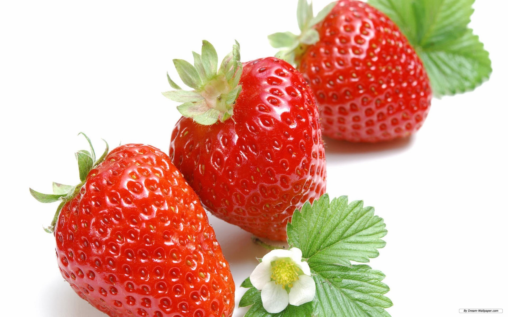 1920x1200 Free Photography wallpaper - Fresh strawberries wallpaper -   wallpaper - Index 2