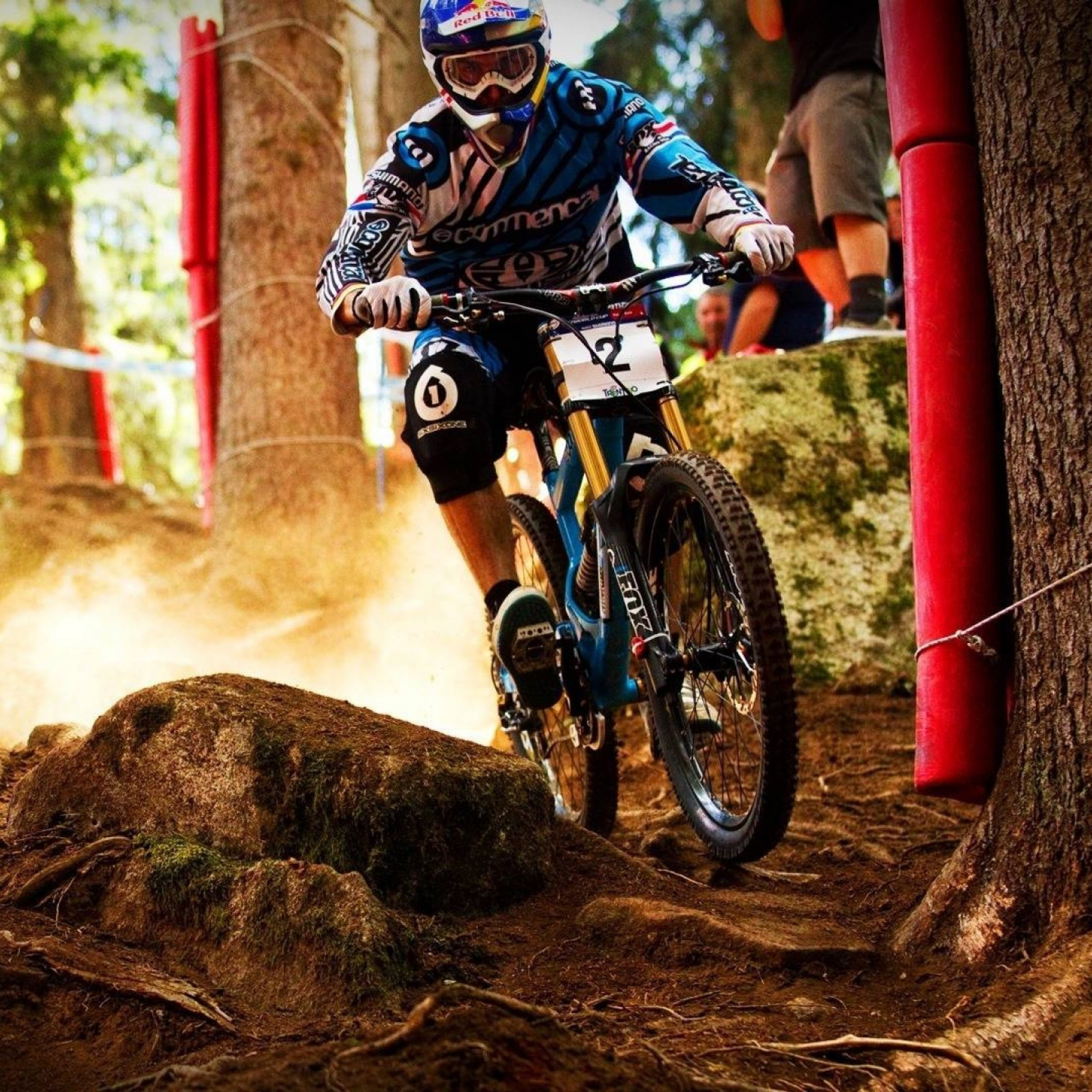 Downhill Mountain Bike Wallpaper (67+ Images