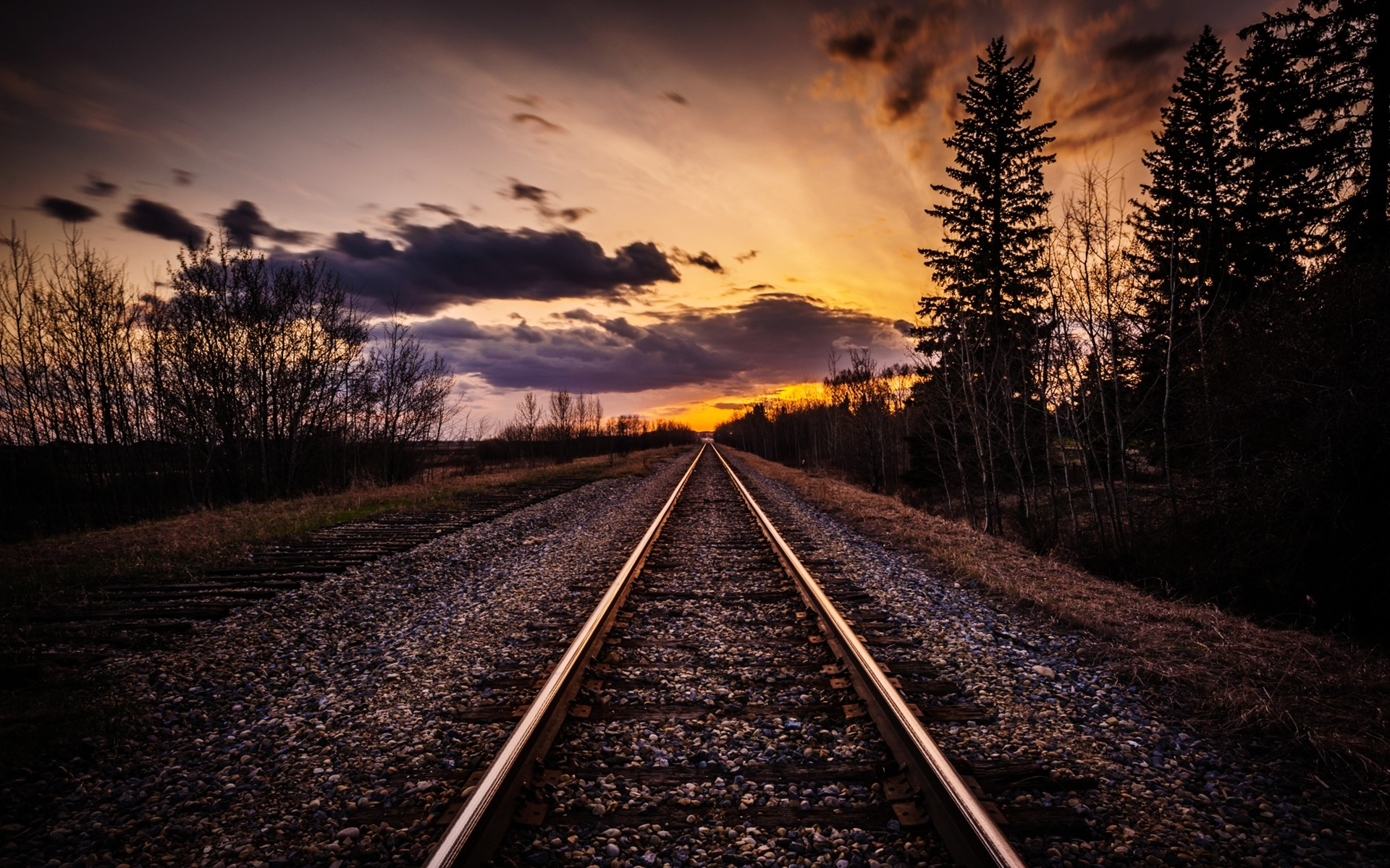 1920x1200 Rail Road Dark Trees Sunset wallpapers and stock photos
