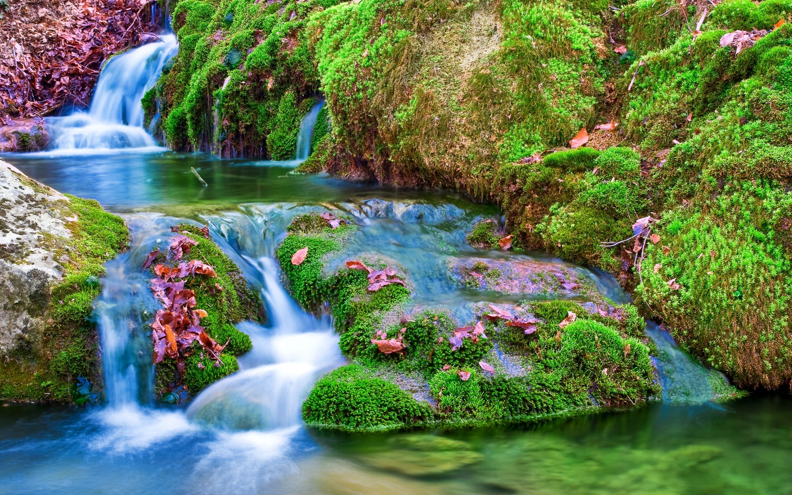 Pretty Wallpapers For Desktop 49 Images