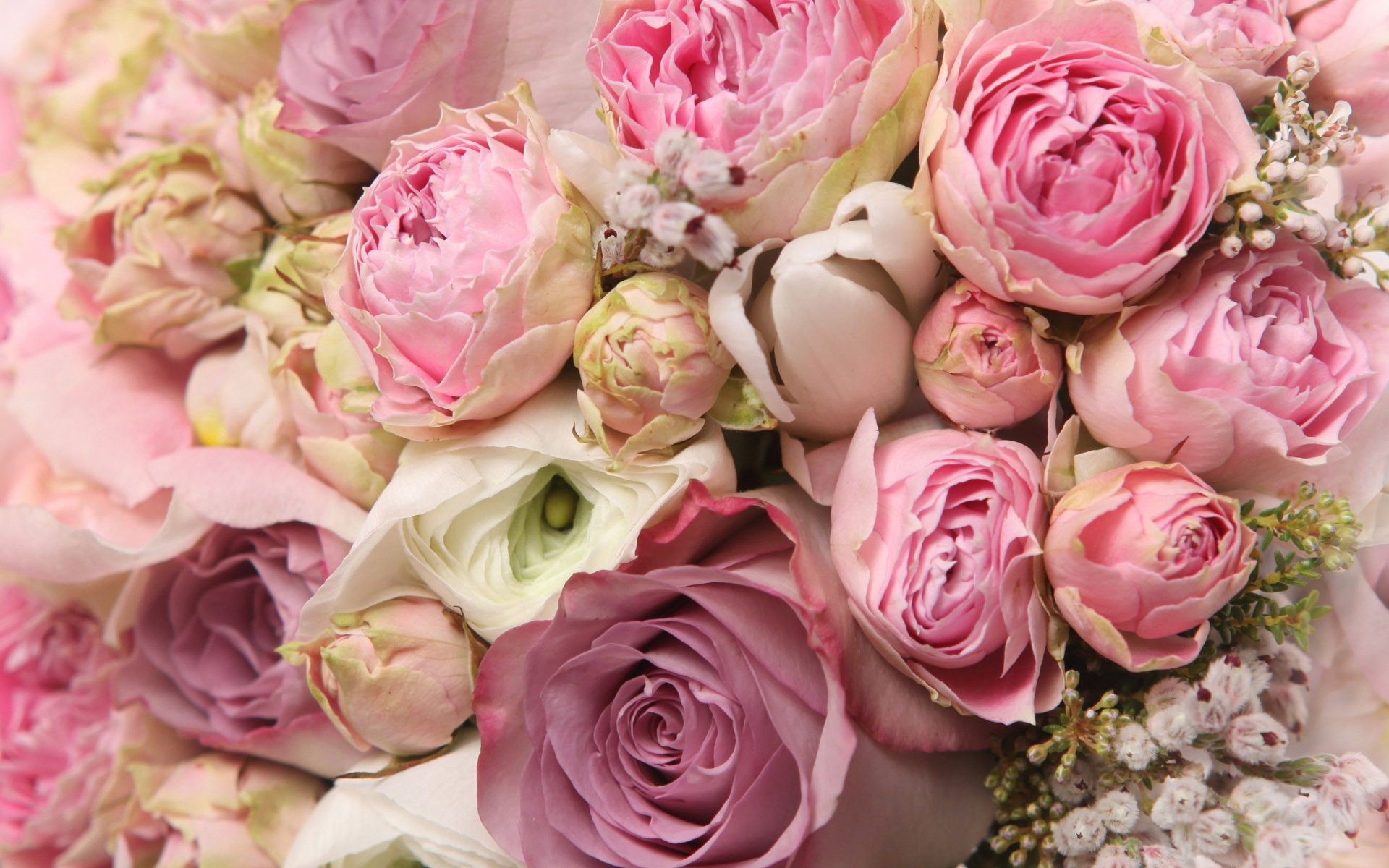 1920x1200 Roses and peonies bouquet wallpaper - 1206743