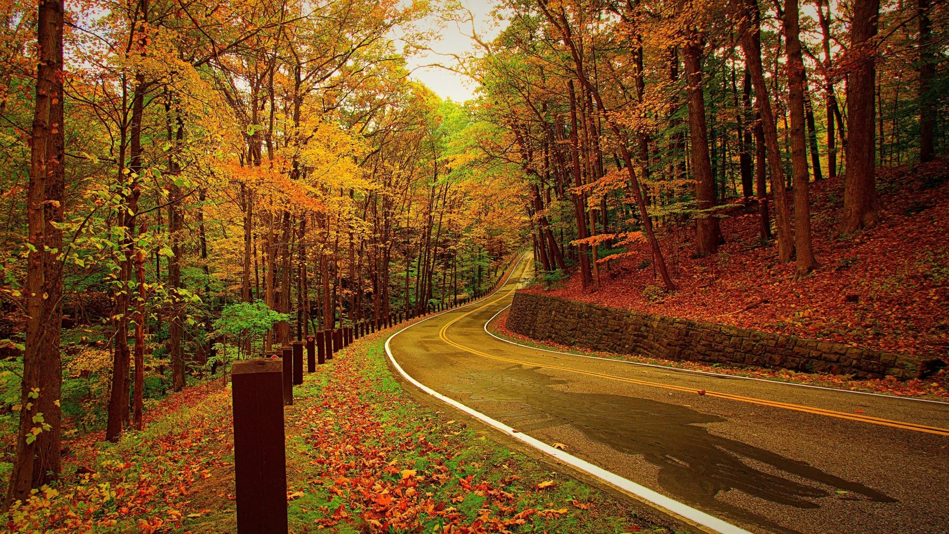 1920x1080 ... Background Full HD 1080p.  Wallpaper autumn, forest, road, turn