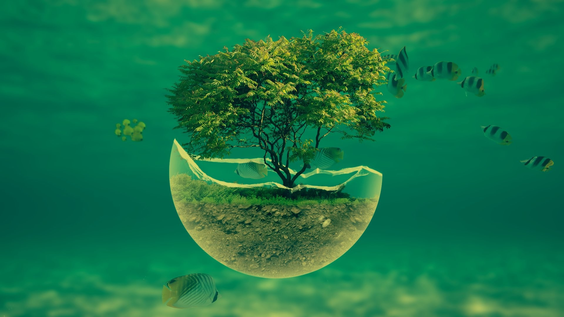 1920x1080 ... 1188_3d_abstract -underwater-tree-widescreen-hd-abstract -desktop-wallpaper ...