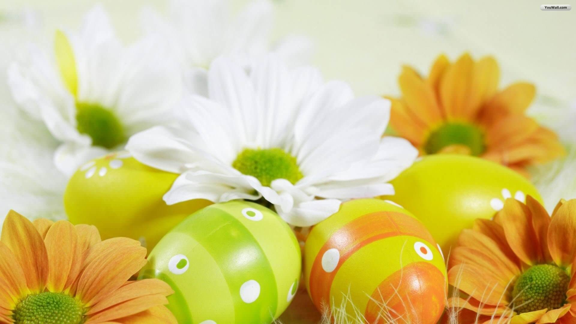 1920x1080 Happy Easter HD Wallpapers