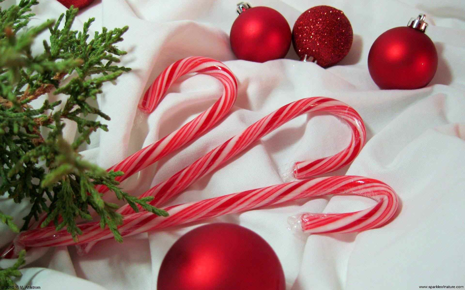 1920x1200 Cool Candy Cane Wallpaper Free download best Latest 3D HD desktop wallpapers  background Wide Most Popular