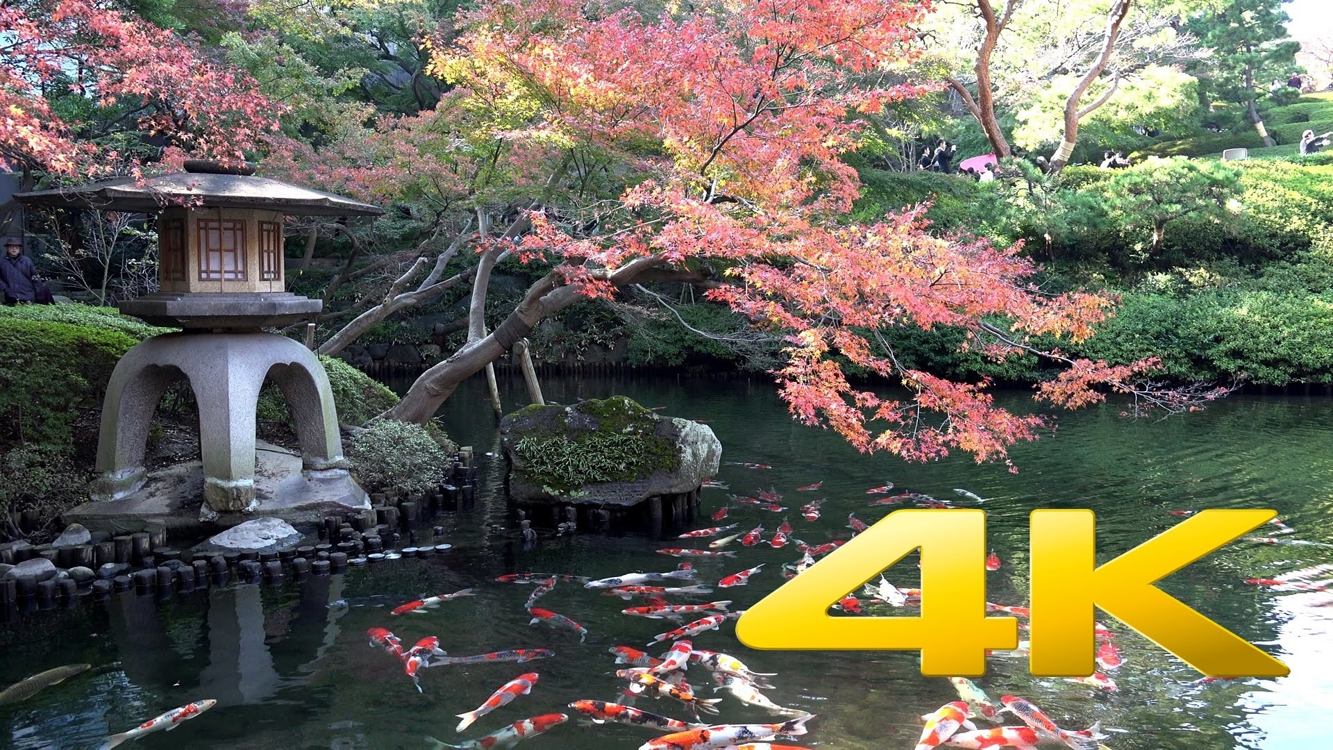 Japanese Garden Wallpapers: 4K Nature Wallpaper Spring Japan (45+ Images