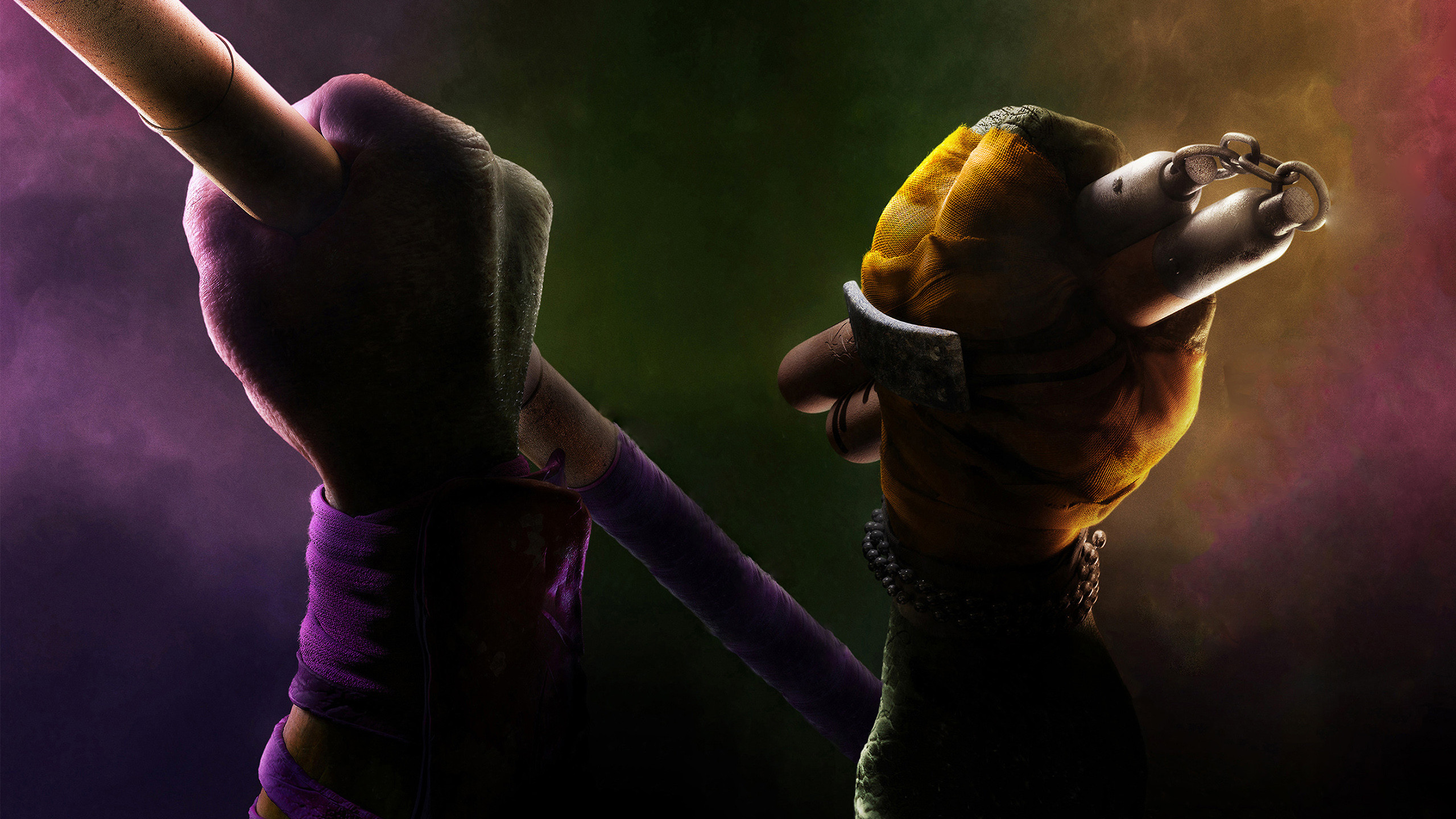2560x1440 Donatello Michelangelo TMNT 2014