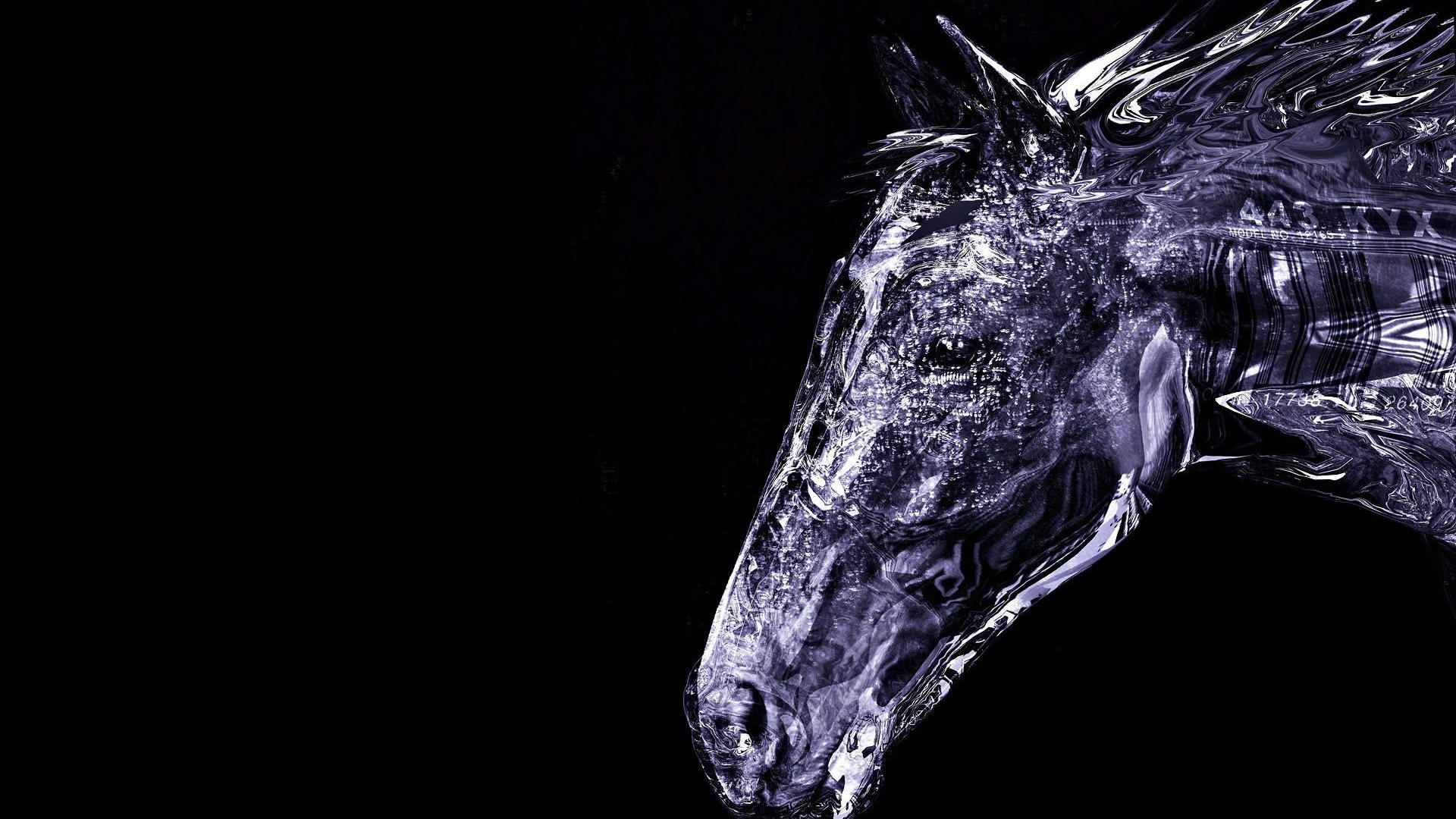 1920x1080 Collection of Cool Horse Backgrounds on HDWallpapers Cool Horse Wallpapers  Wallpapers)