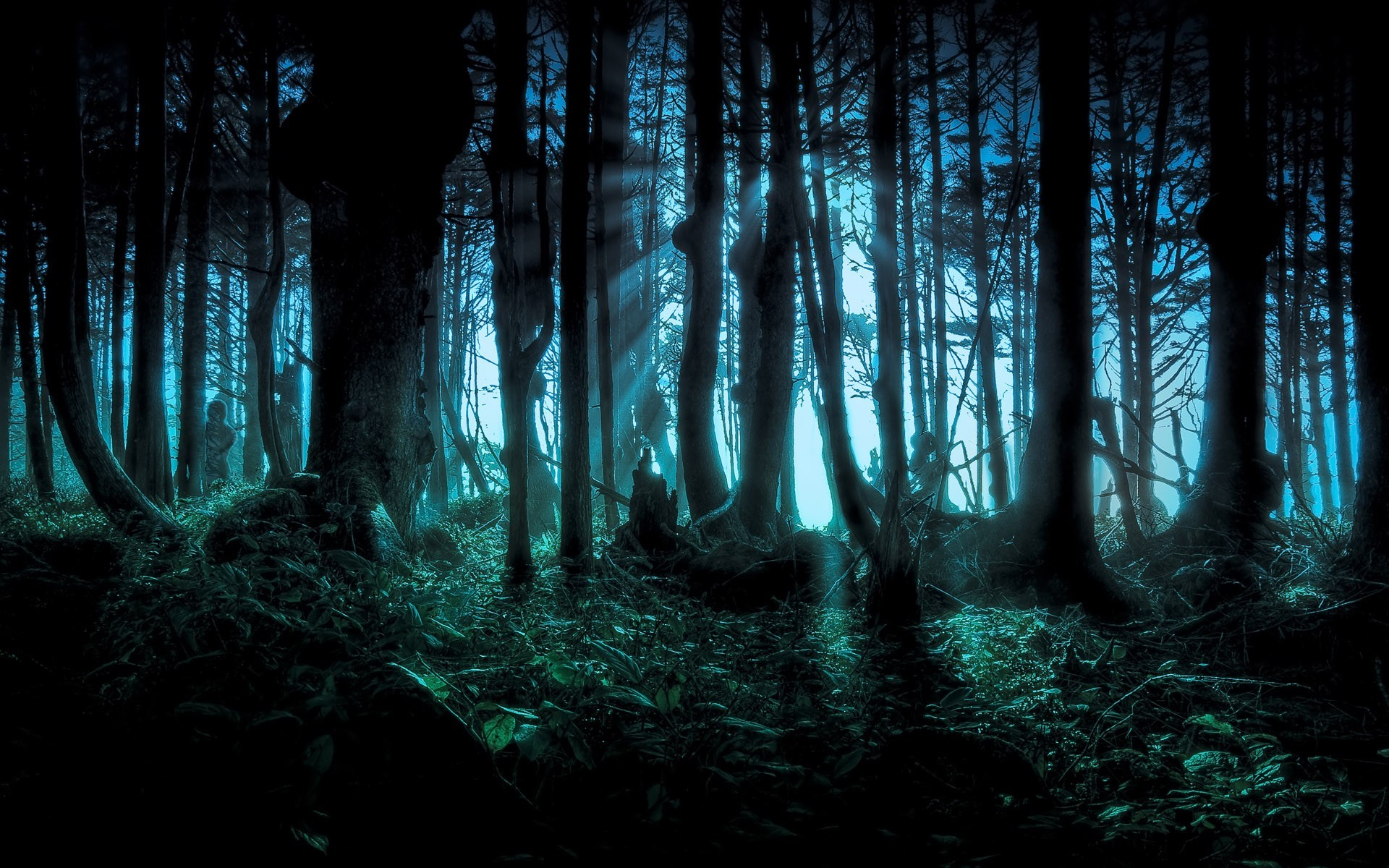 1920x1200 Spooky Forest — Backlit