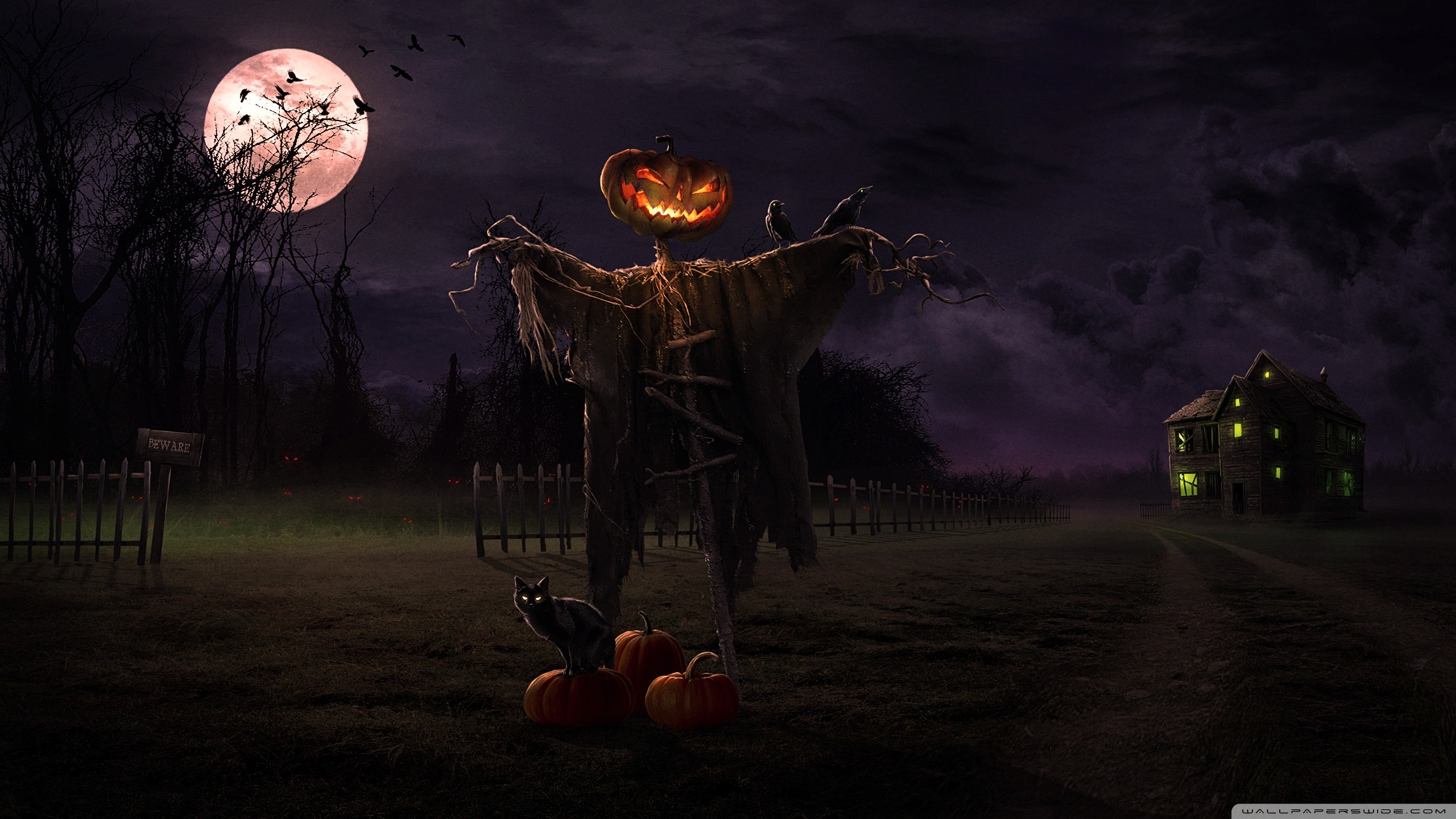 2560x1440 Spooky Path HD Wide Wallpaper for Widescreen