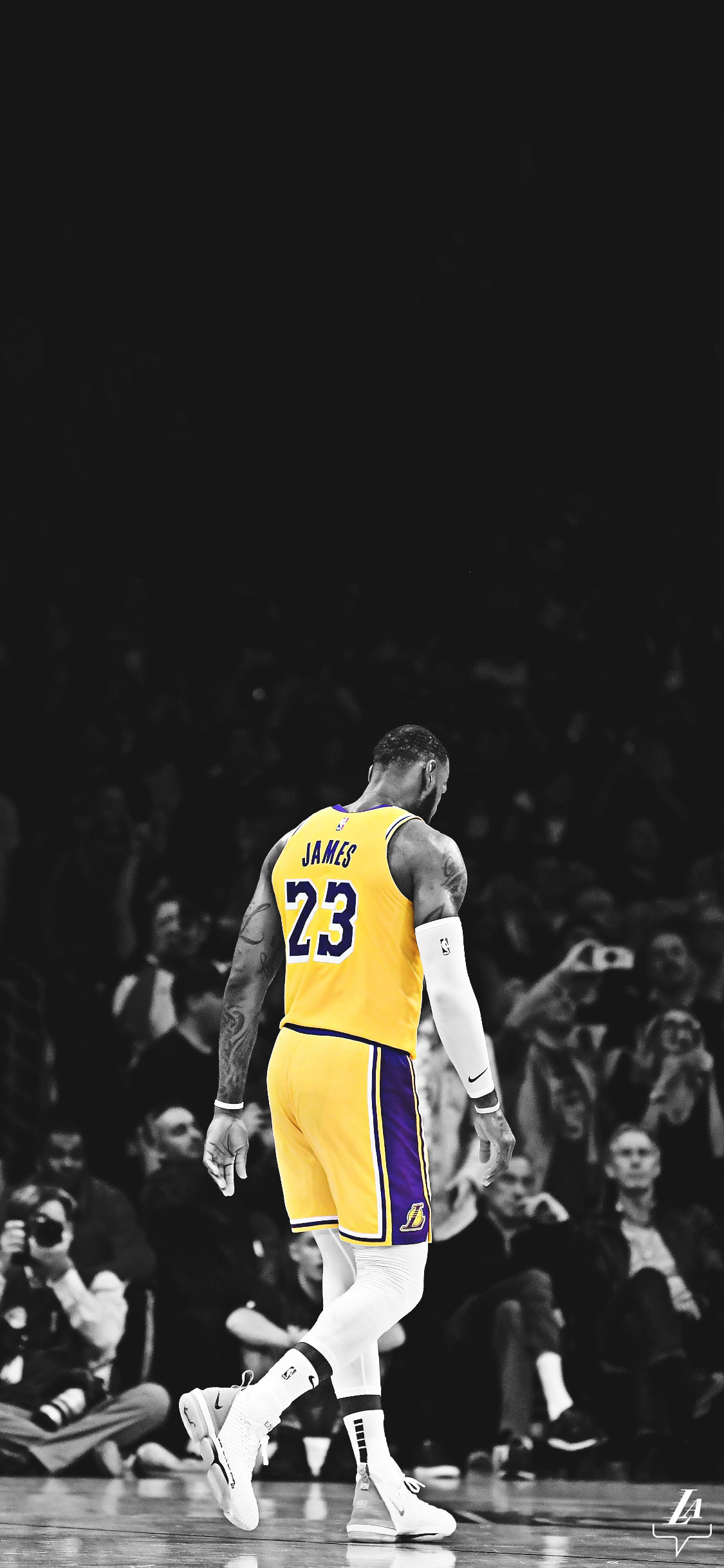 1125x2436 LeBron James