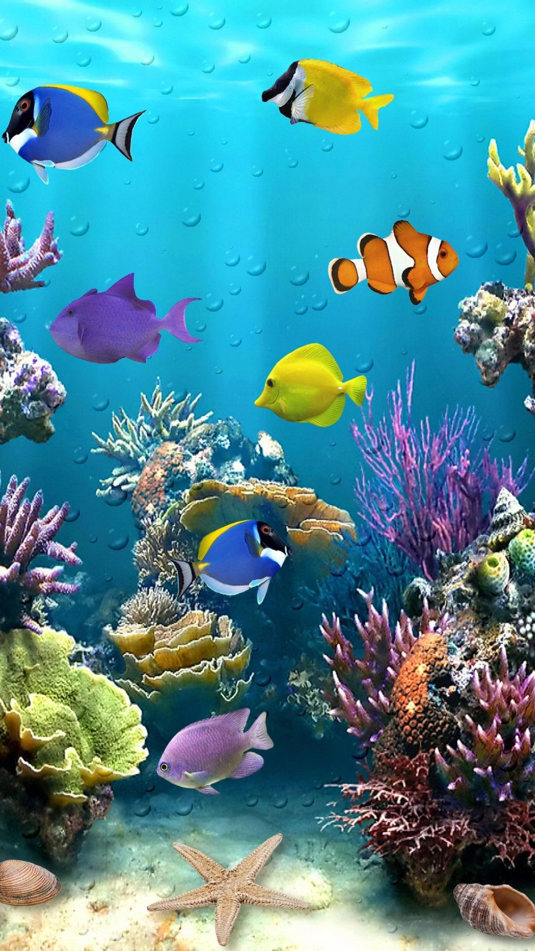 Koi Fish Live Wallpaper (56+ images)