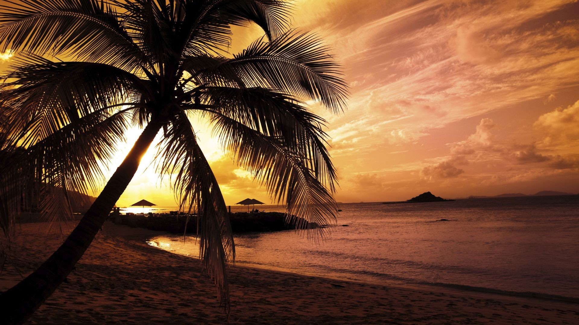 1920x1080 Tropical beach scenery at night Wallpapers