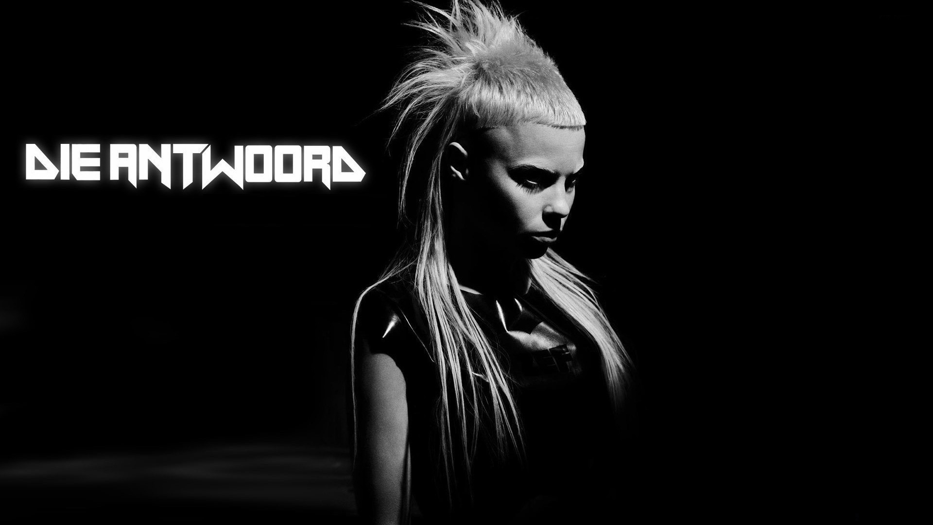 1920x1080 Die Antwoord High Definition Wallpapers