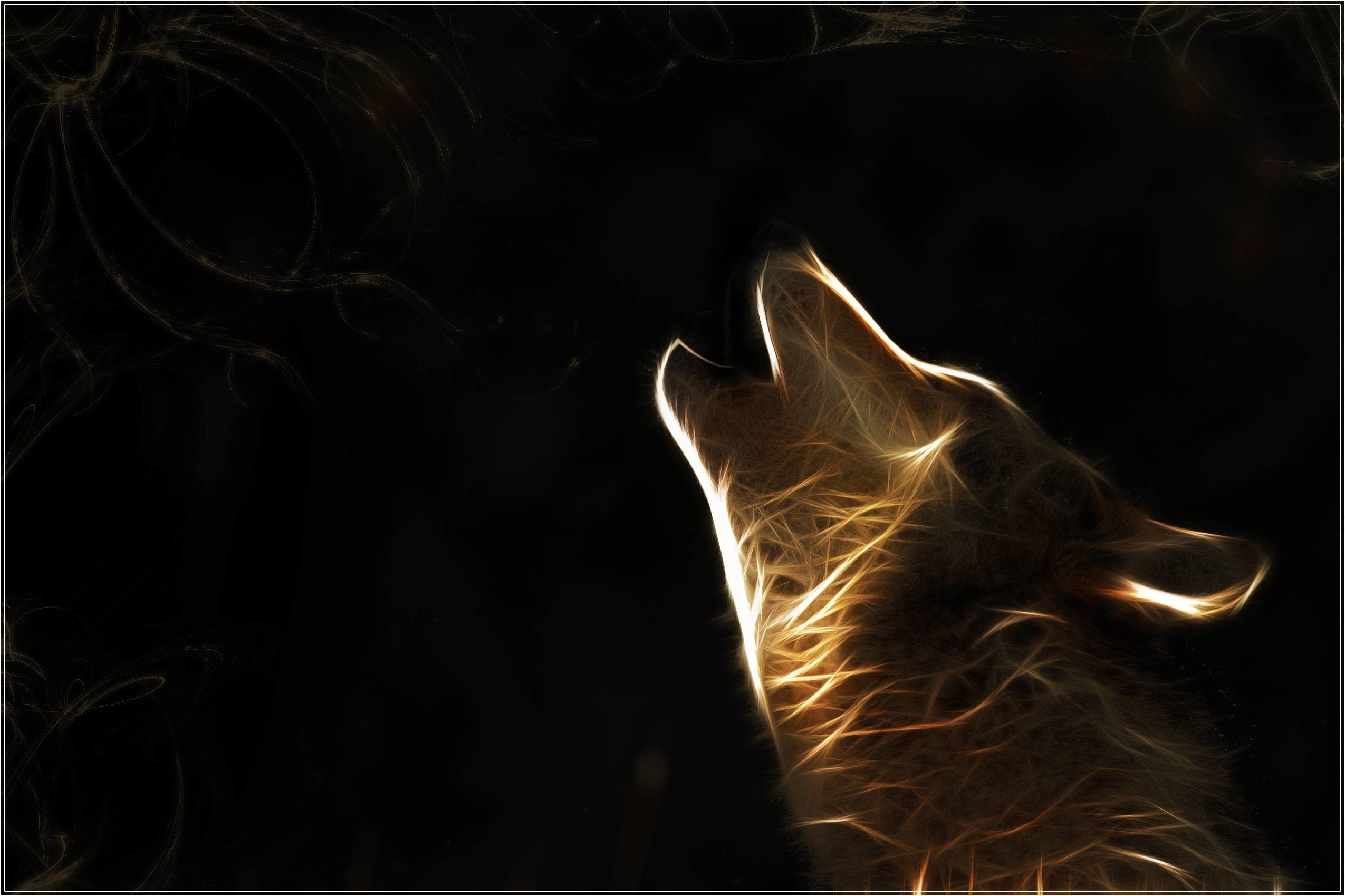2550x1699 ... wolf wallpapers on kubipet com ...