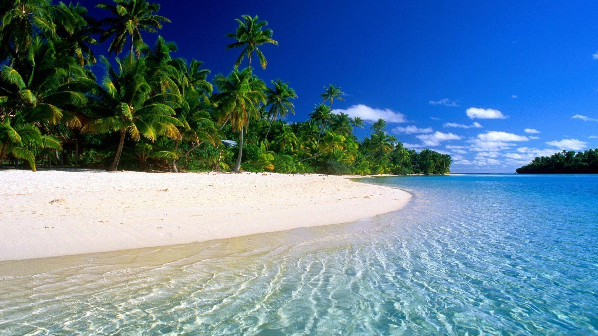 beach wallpaper for desktop background 57 images
