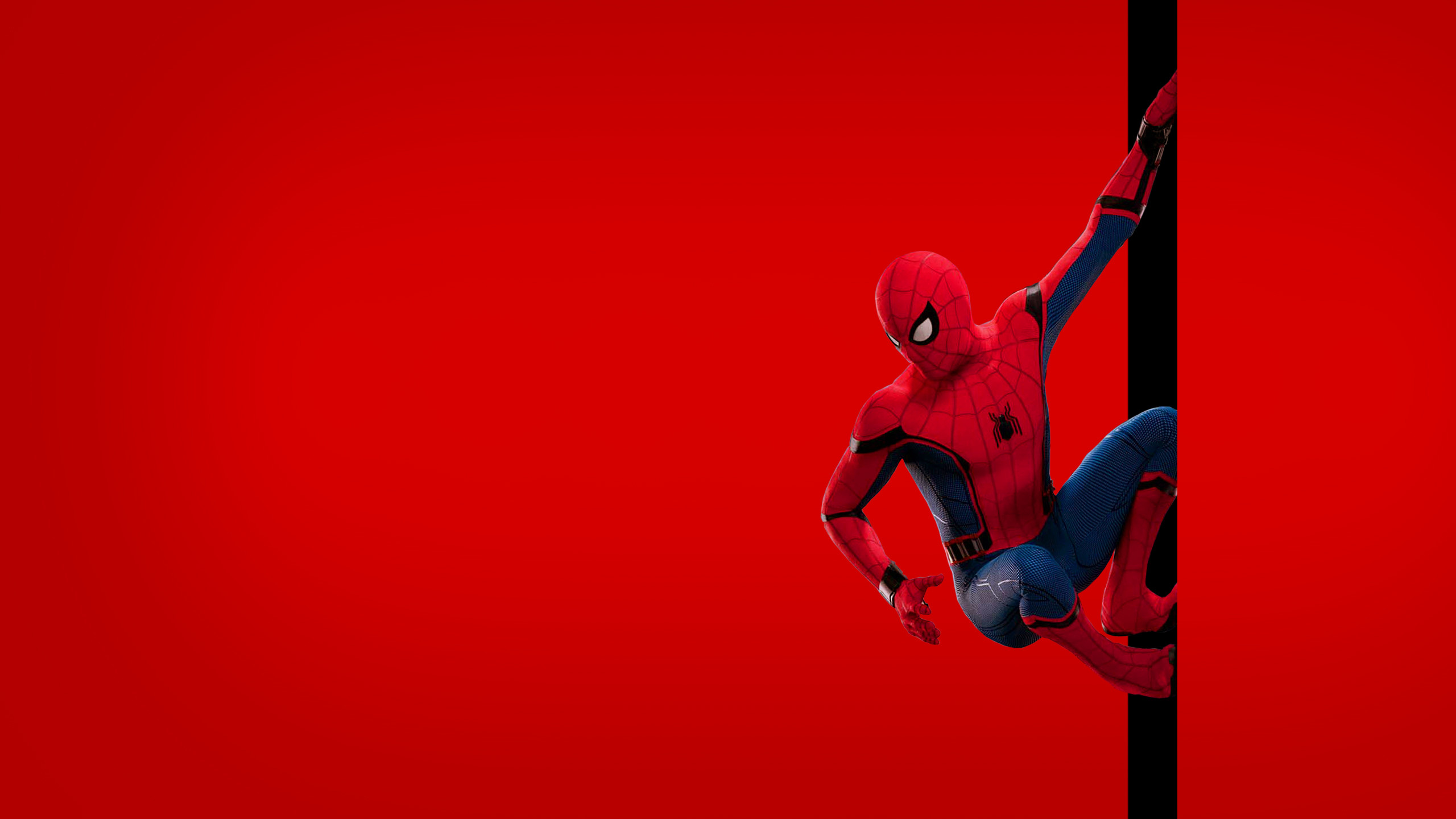 2560x1440 Spider-Man Homecoming wallpapers