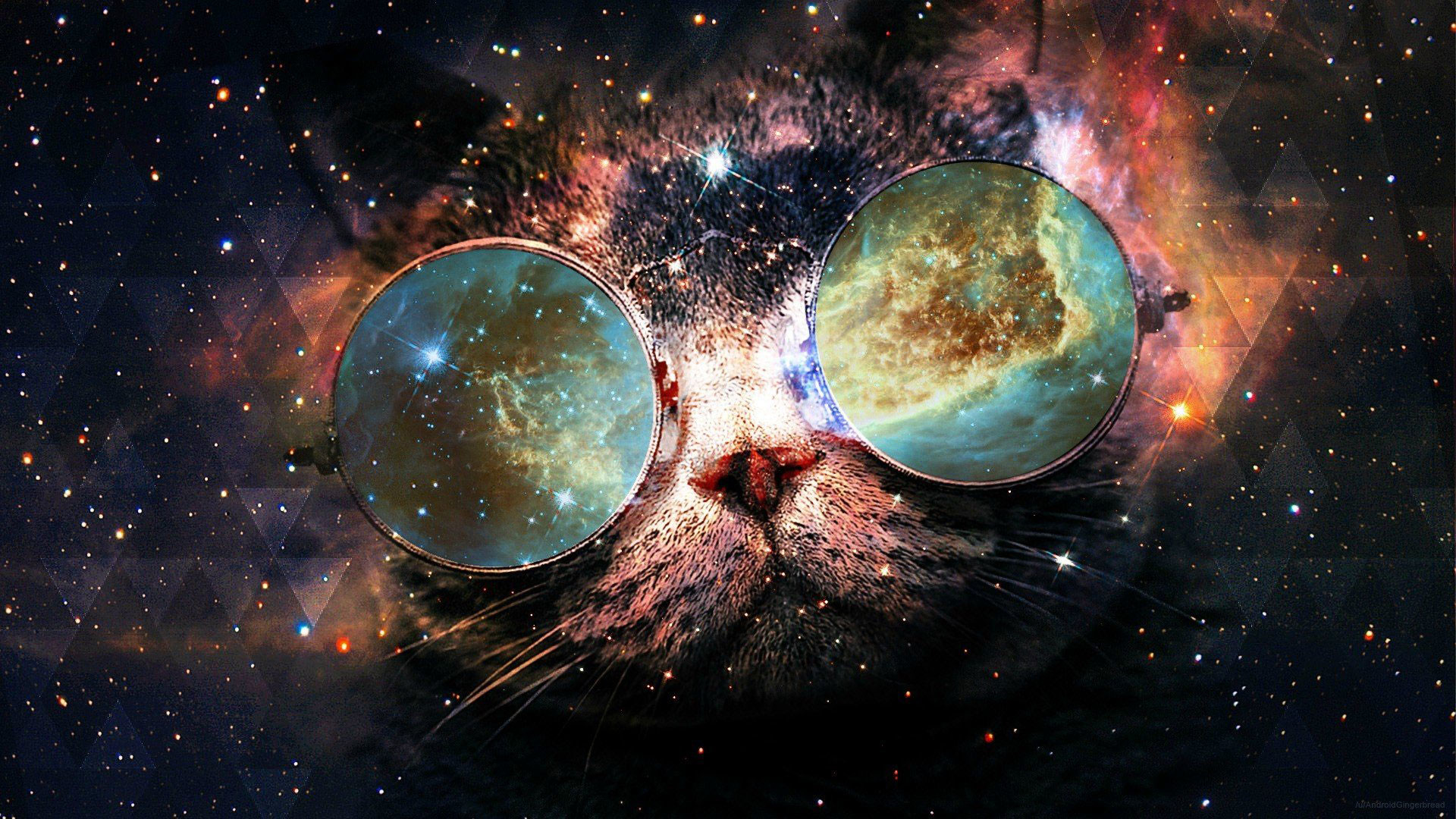 1920x1080 Backgrounds For Cat Galaxy 8backgrounds Com