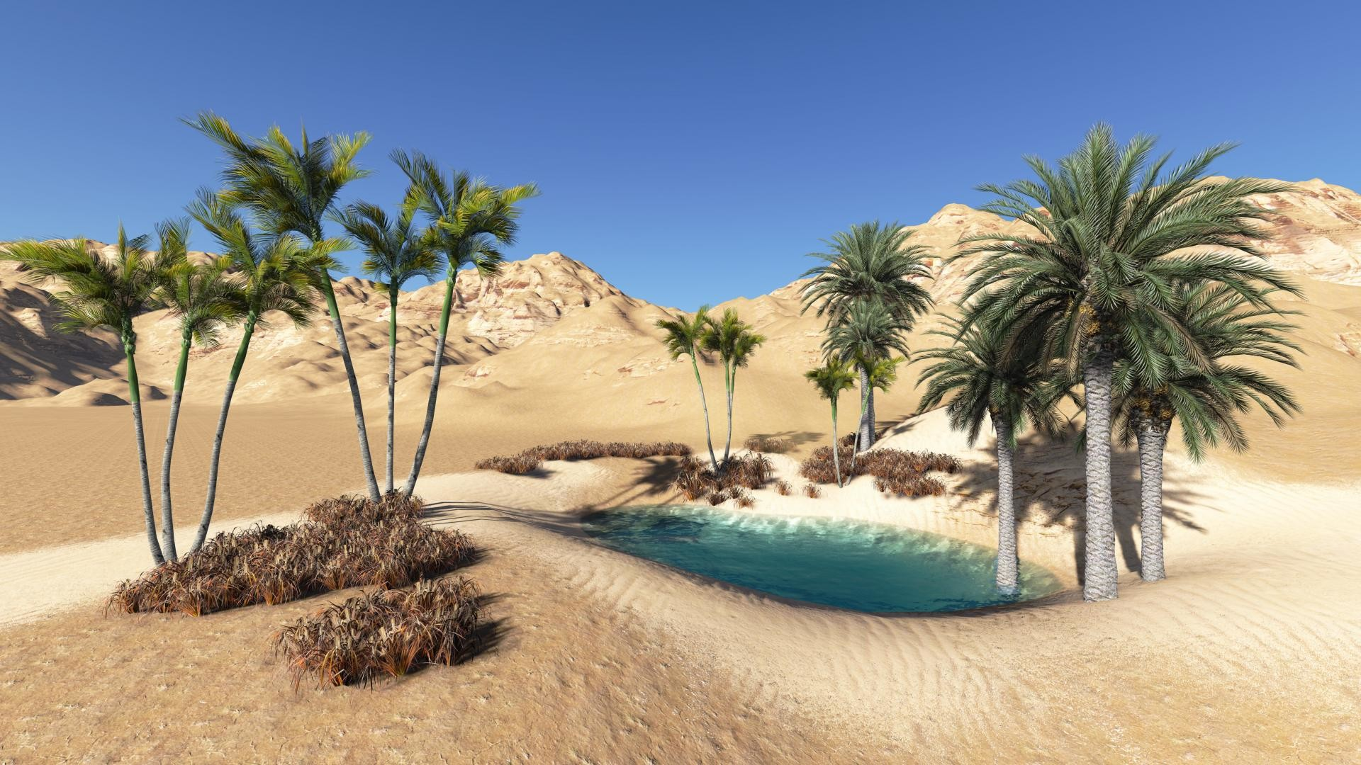 Desert Oasis Wallpaper (57+ images) Oasis Landscape Wallpaper
