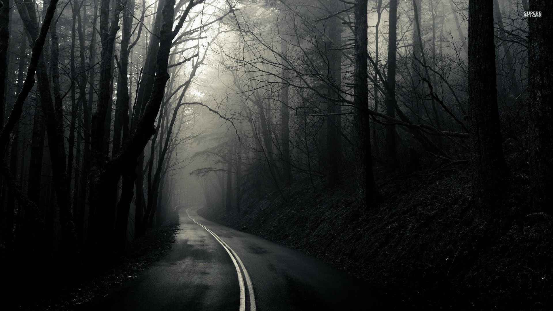 Spooky forest wallpaper 68 images - Hd wallpapers of darkness ...