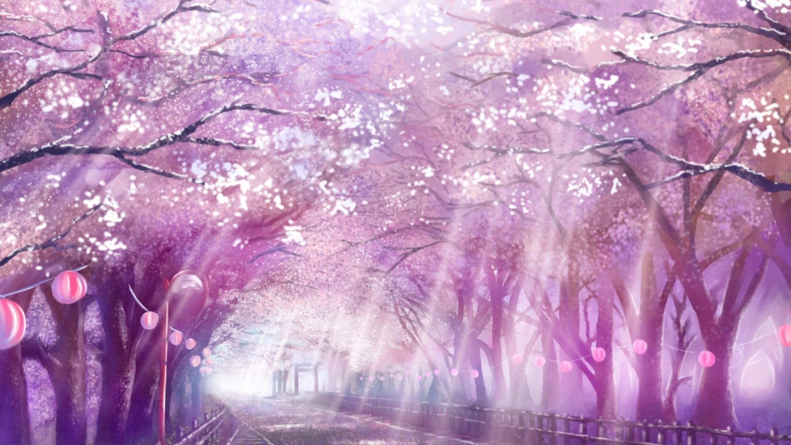 blossom anime cherry sakura landscape path scenic sunlight