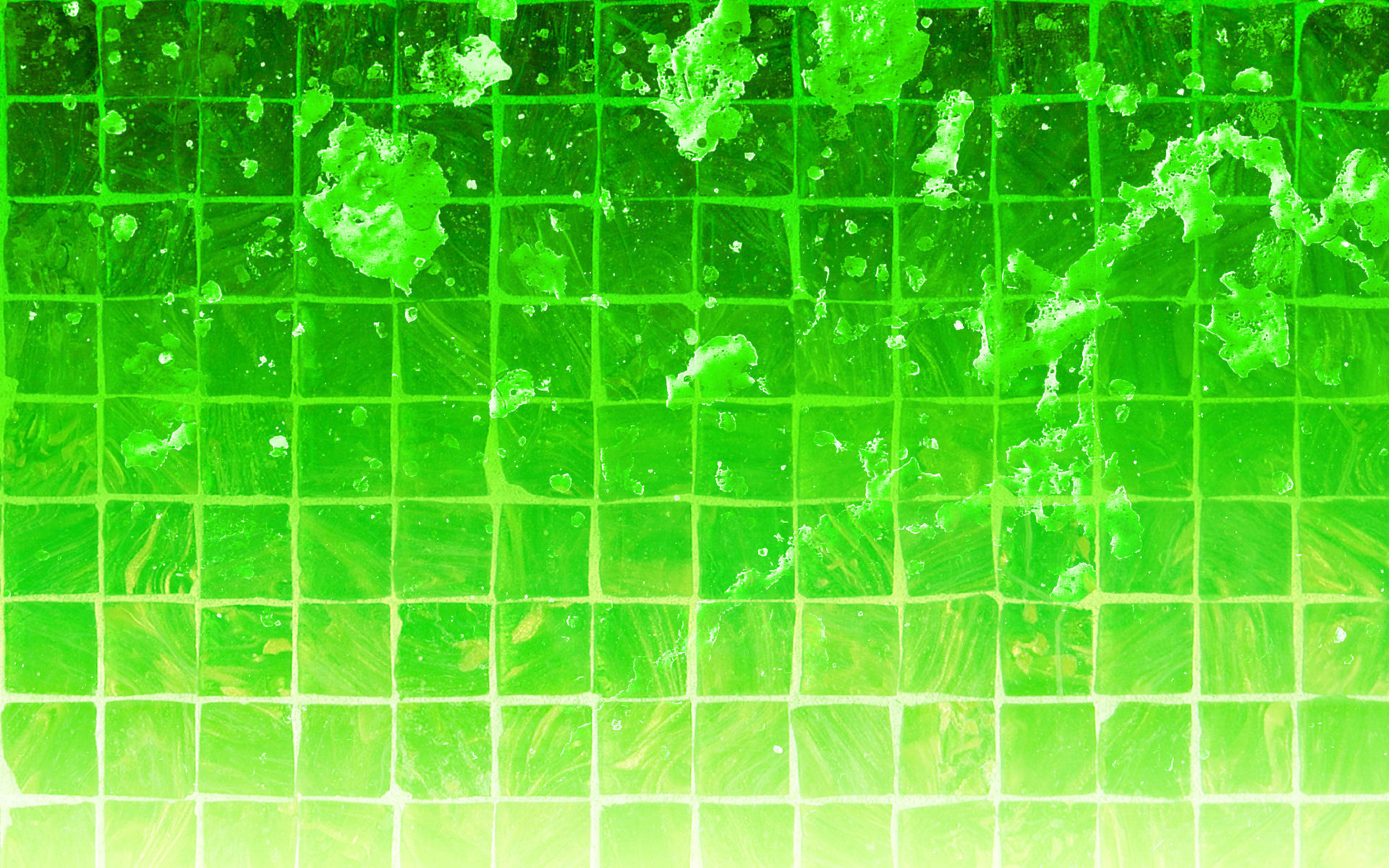 Windows mobile wallpaper green