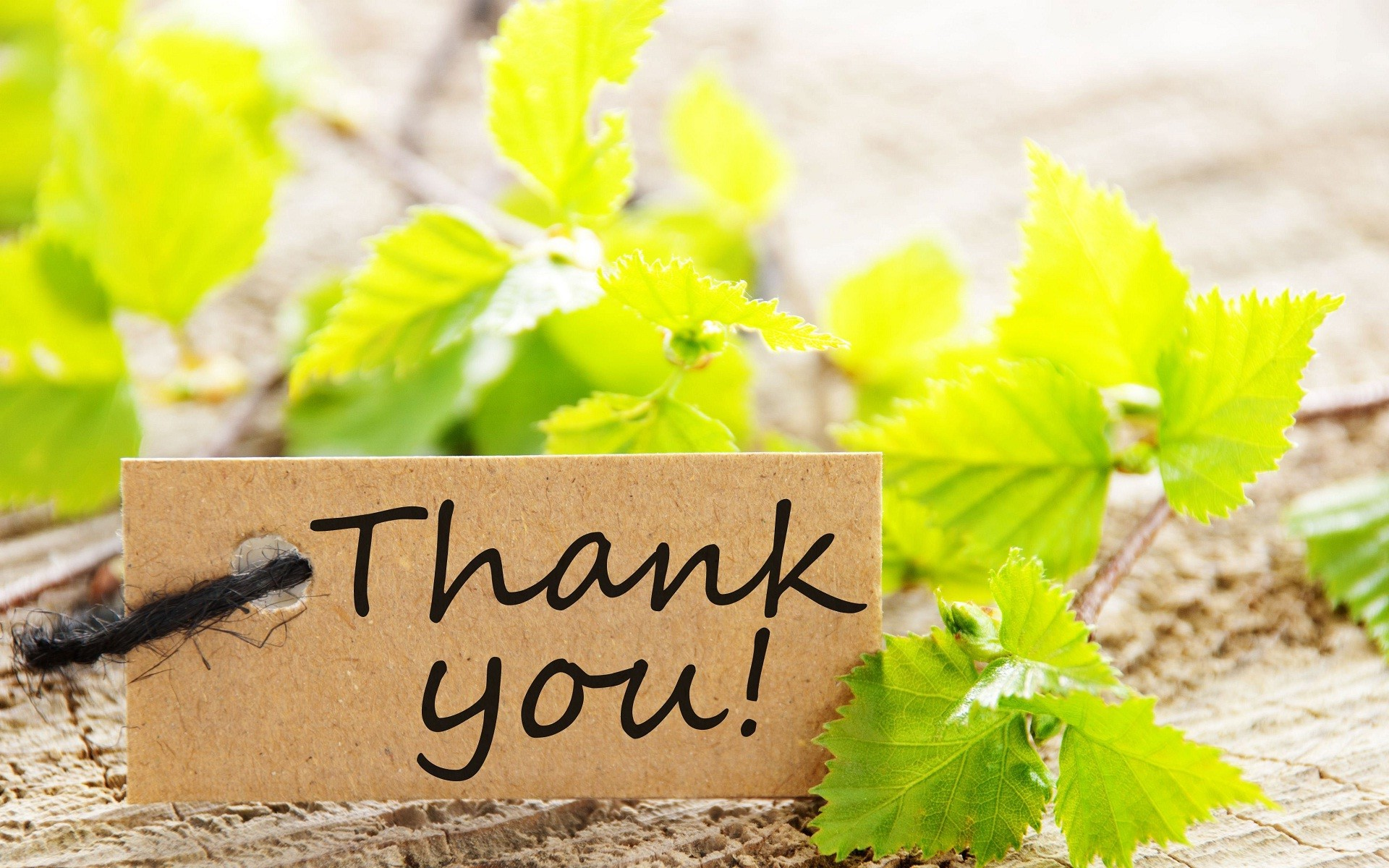 Thank You Wallpaper (61+ Images