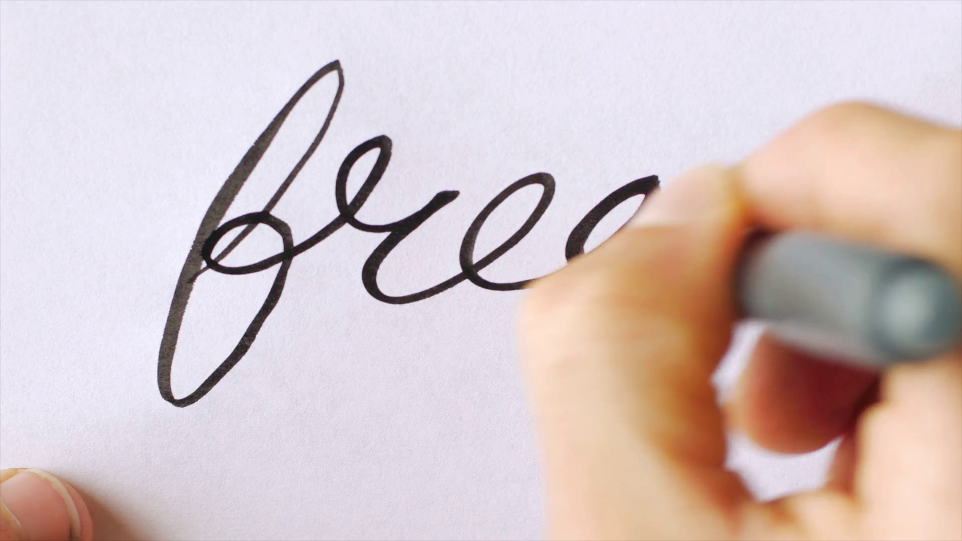 1920x1080 Hand writing the word FREE in cursive with a black brush pen on white paper  Stock Video Footage - Storyblocks Video