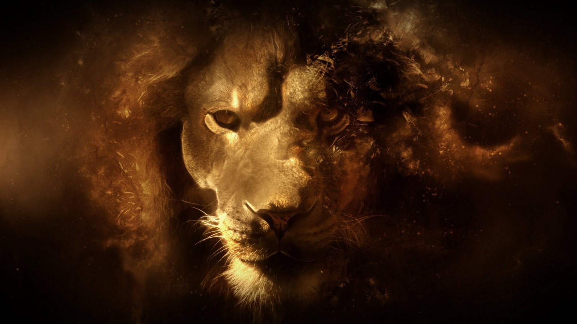 1920x1080 fantasy hd lion high defini