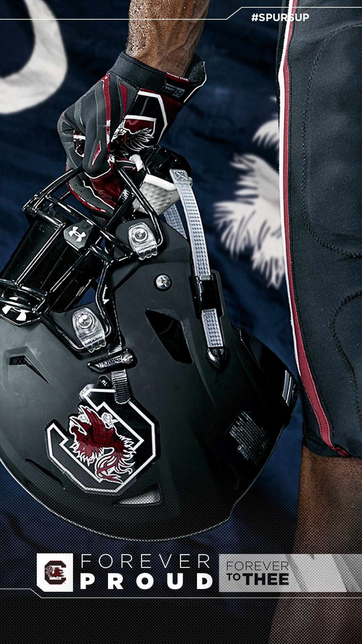 1200x2132 South Carolina Football Iphone Wallpaper ✓ The Galleries of HD .