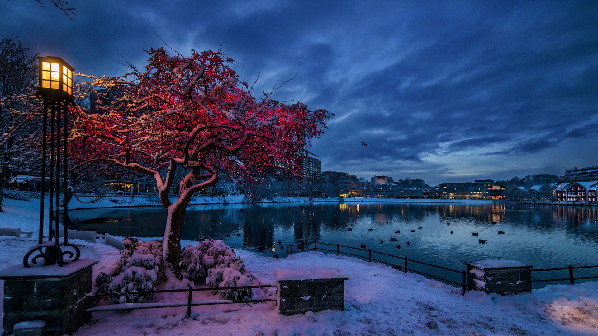Snow Wallpapers 1920x1080 Full Hd: Snow In The City Wallpaper (65+ Images