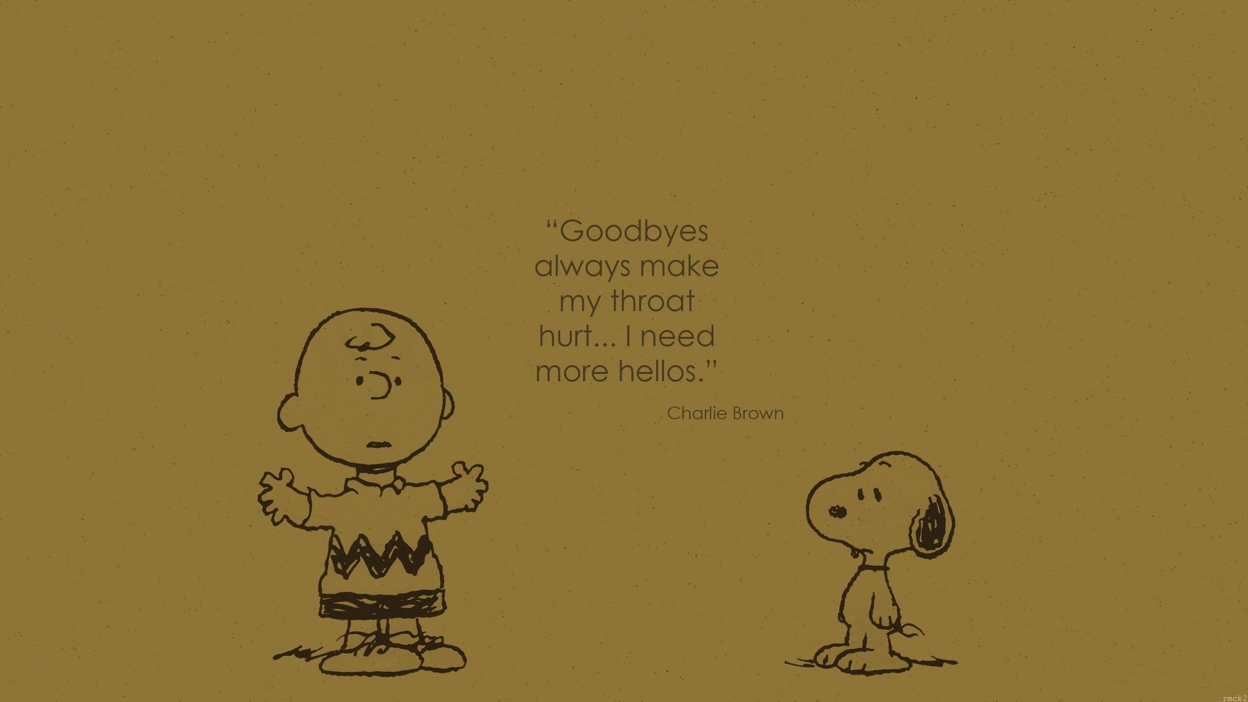 Charlie Brown Desktop Wallpaper 40 Images